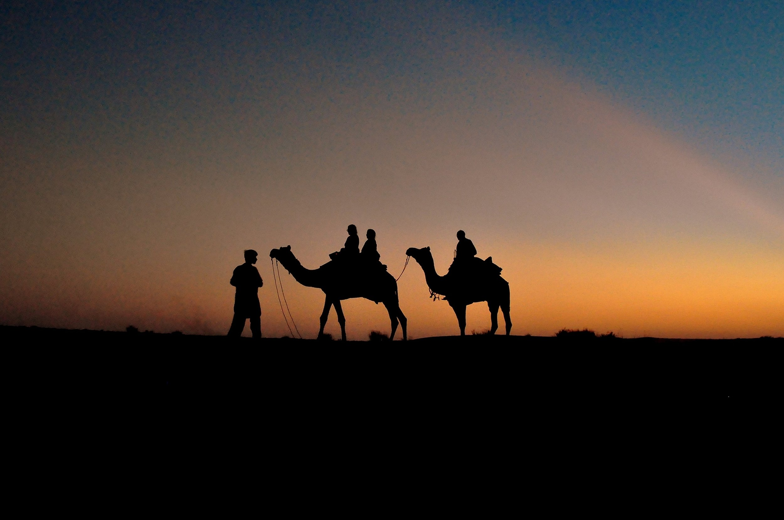 tourists traveling in desert on camels