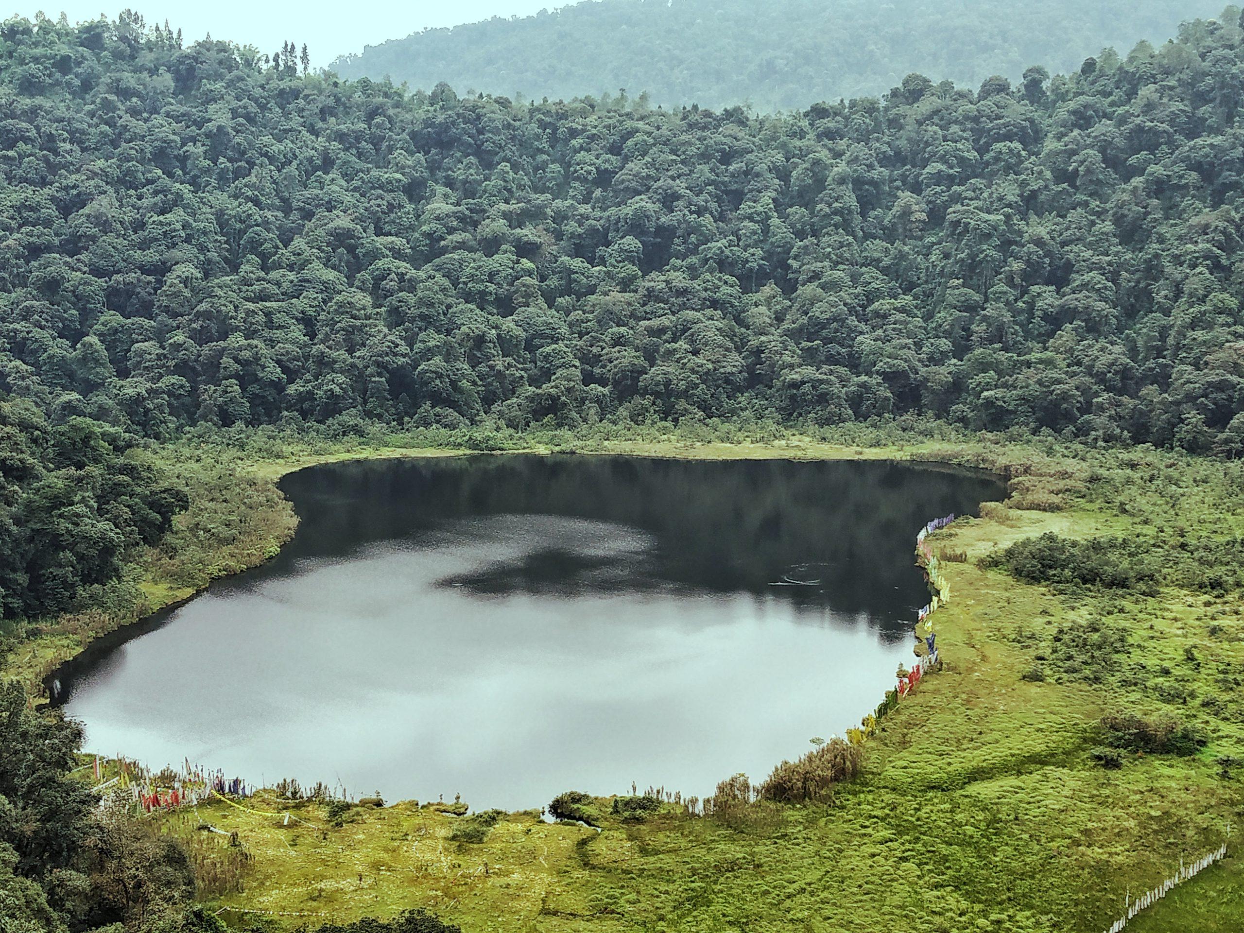 lake amidst greenery