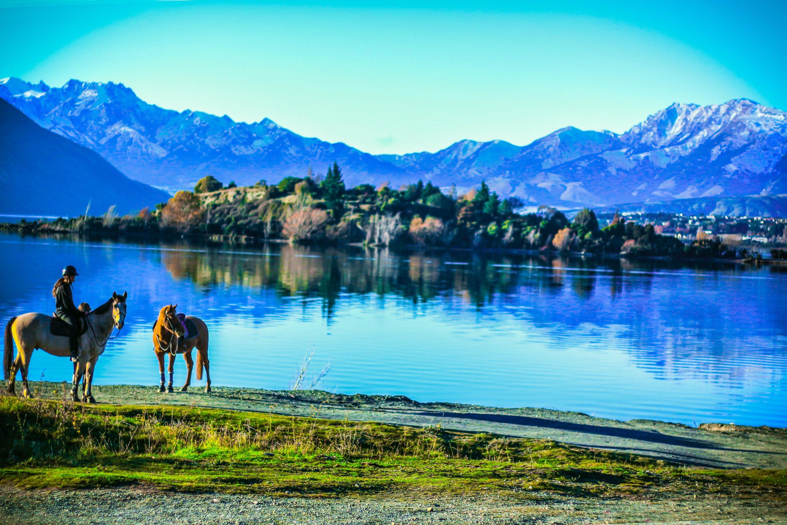 horse ride near the lake