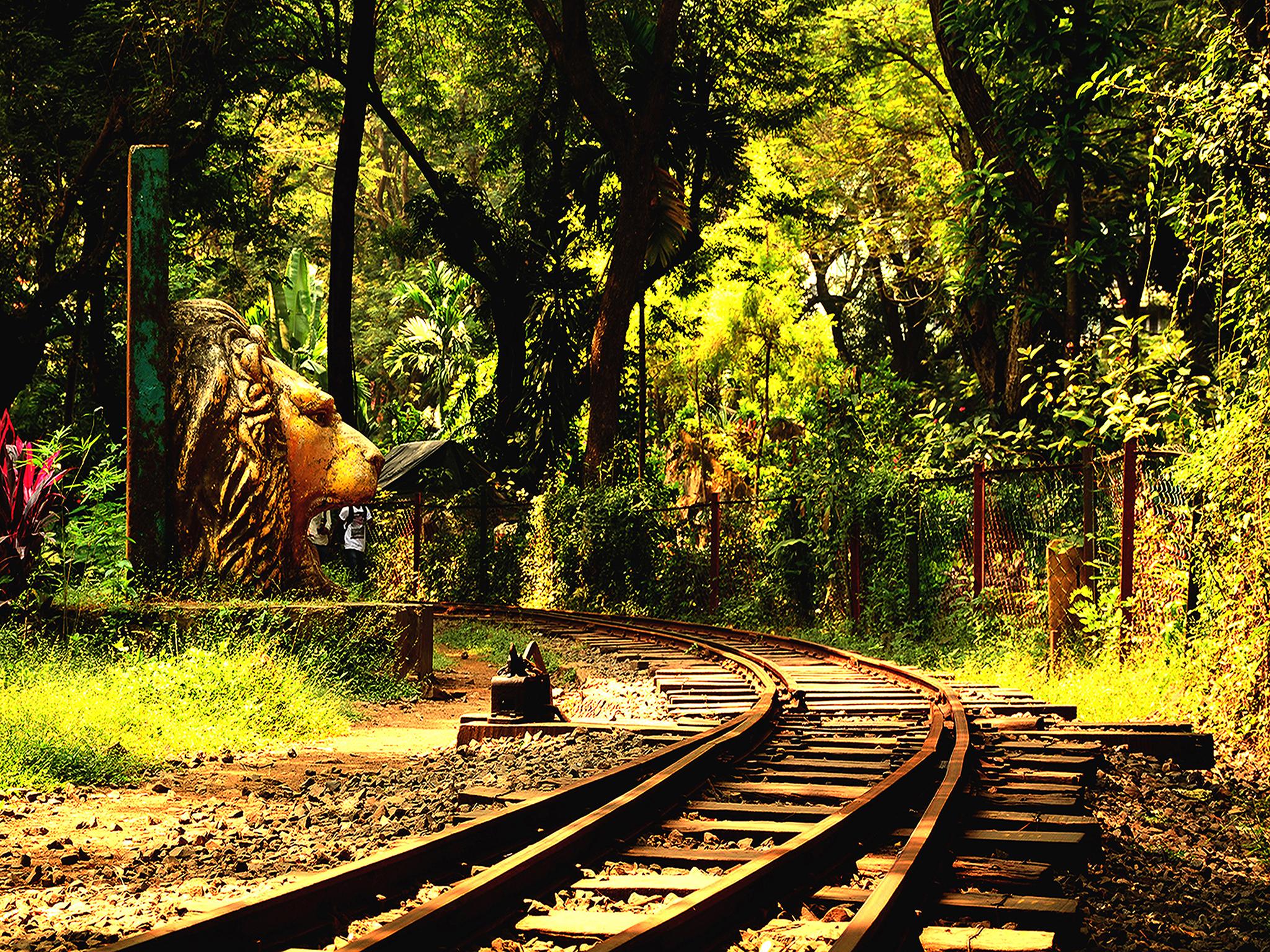 Landmark Train Track