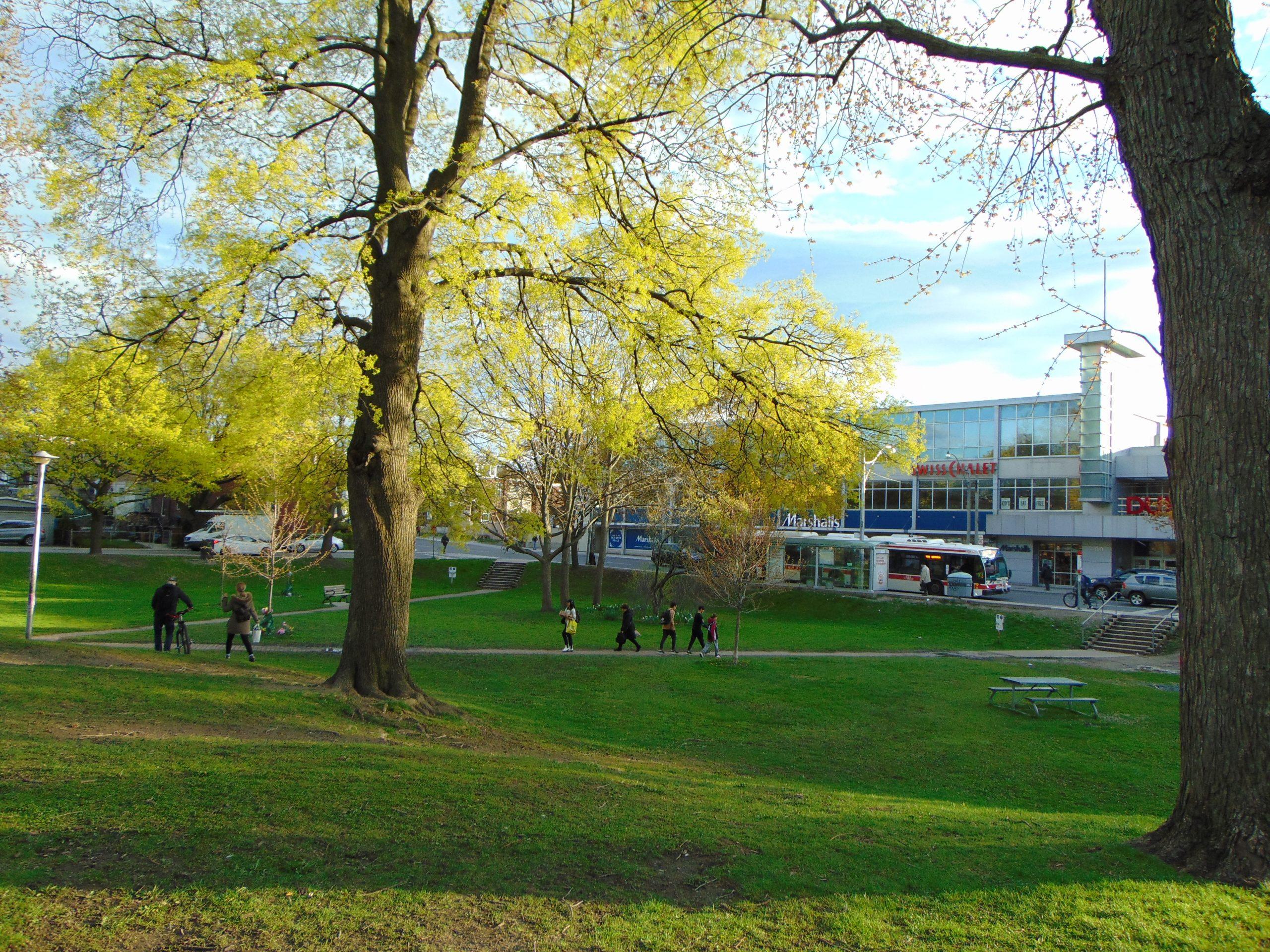 Scene of a park in Canada.