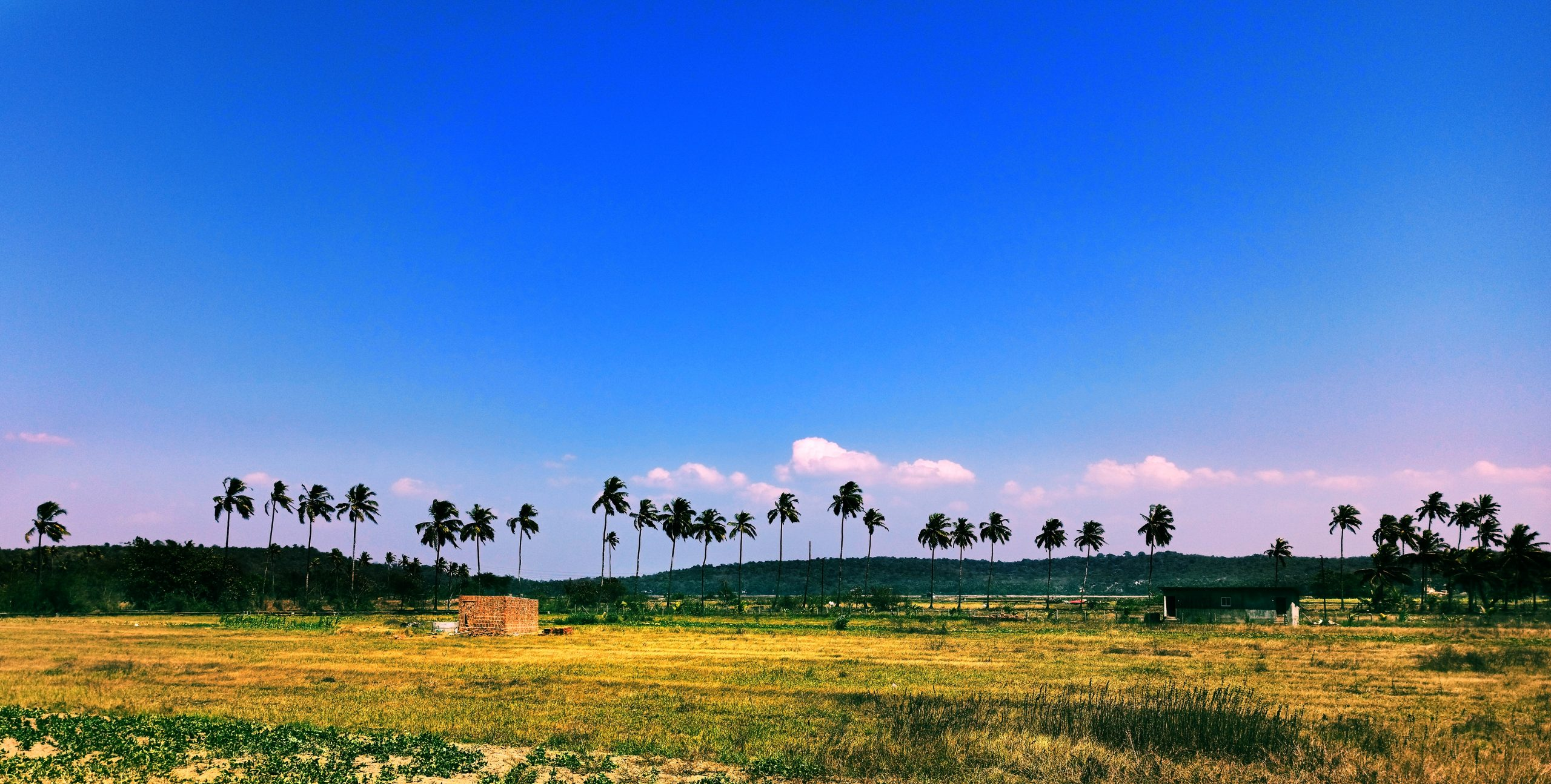 A scenic view with blue sky