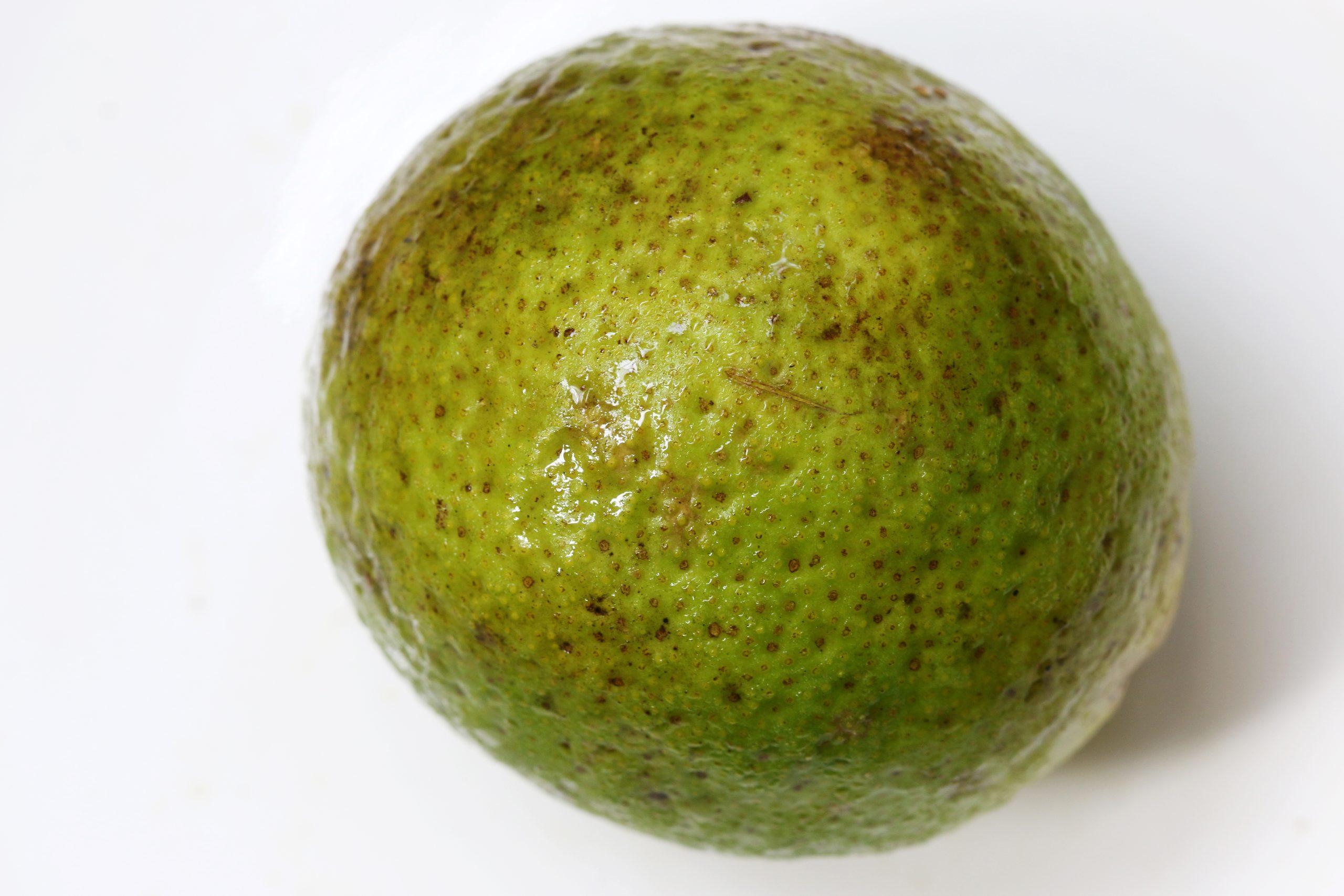 A lemon for making lemonade.