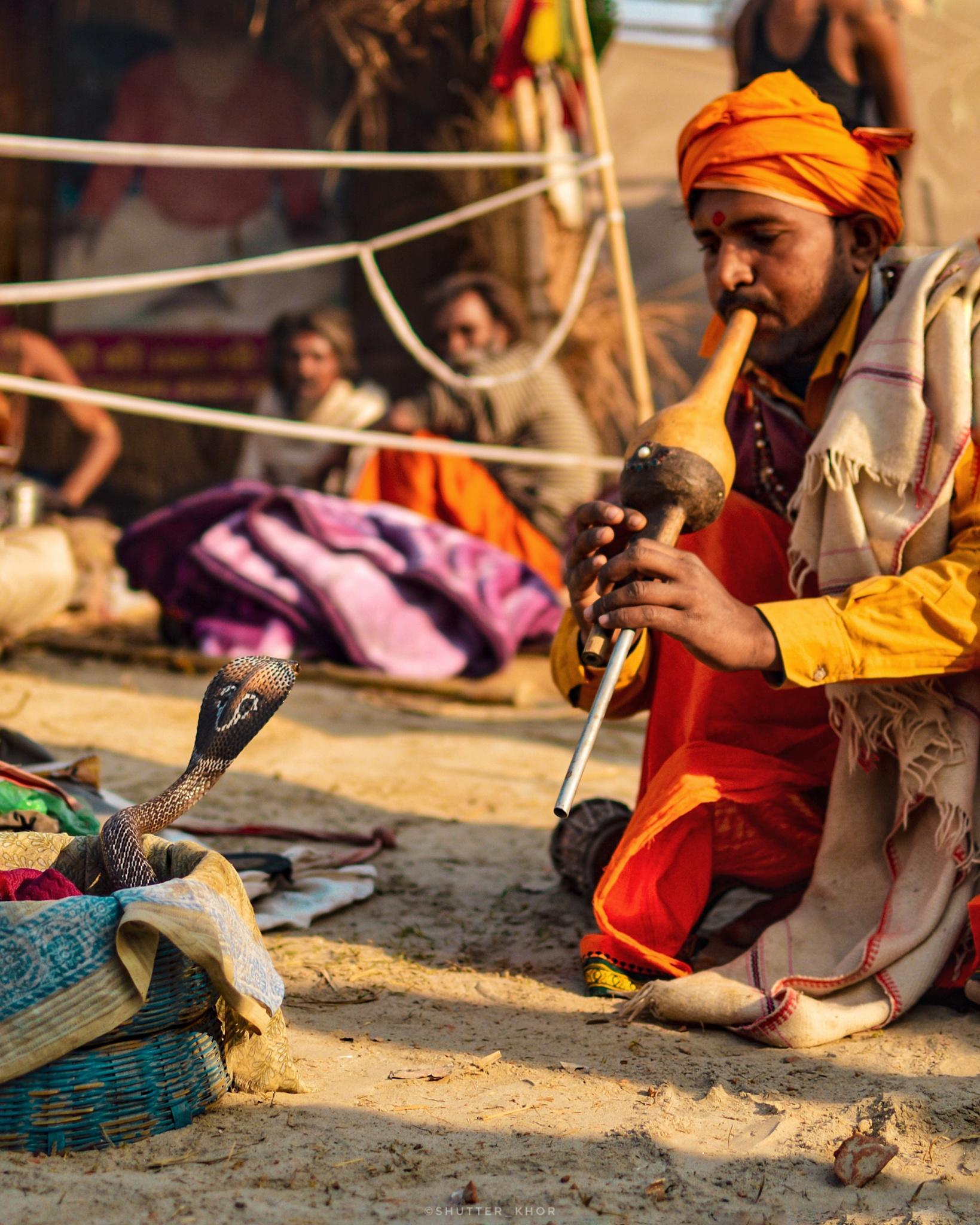 Man playing instrument to hypnotize a cobra