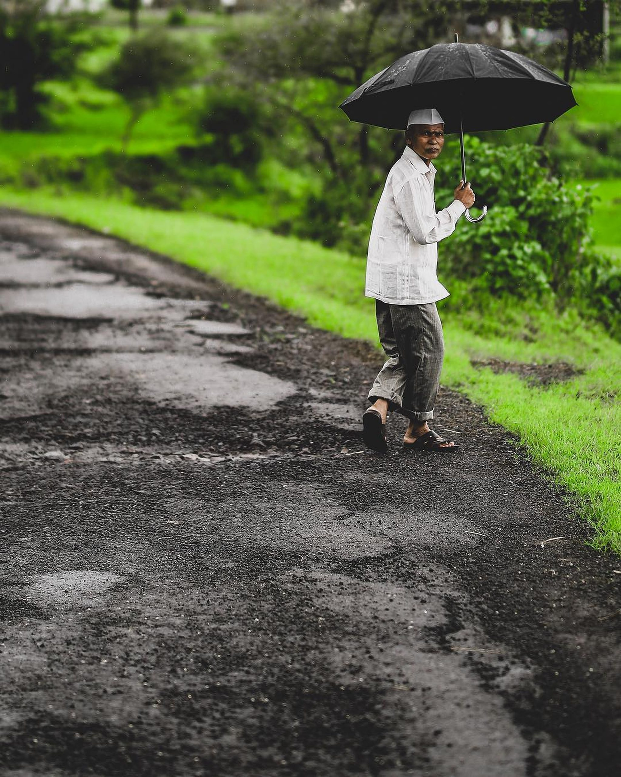 An old man with umbrella on a rainy day.