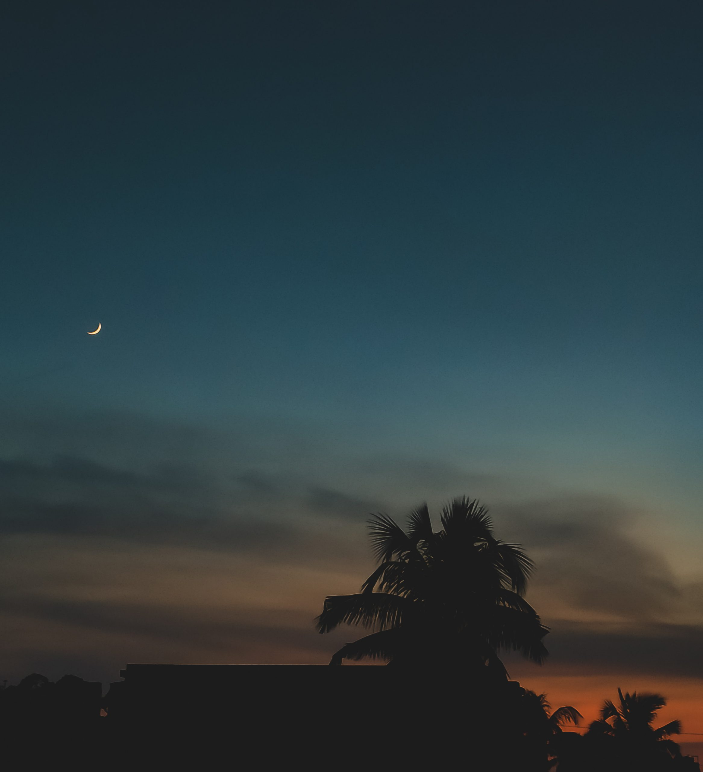 Silhouette Scenery