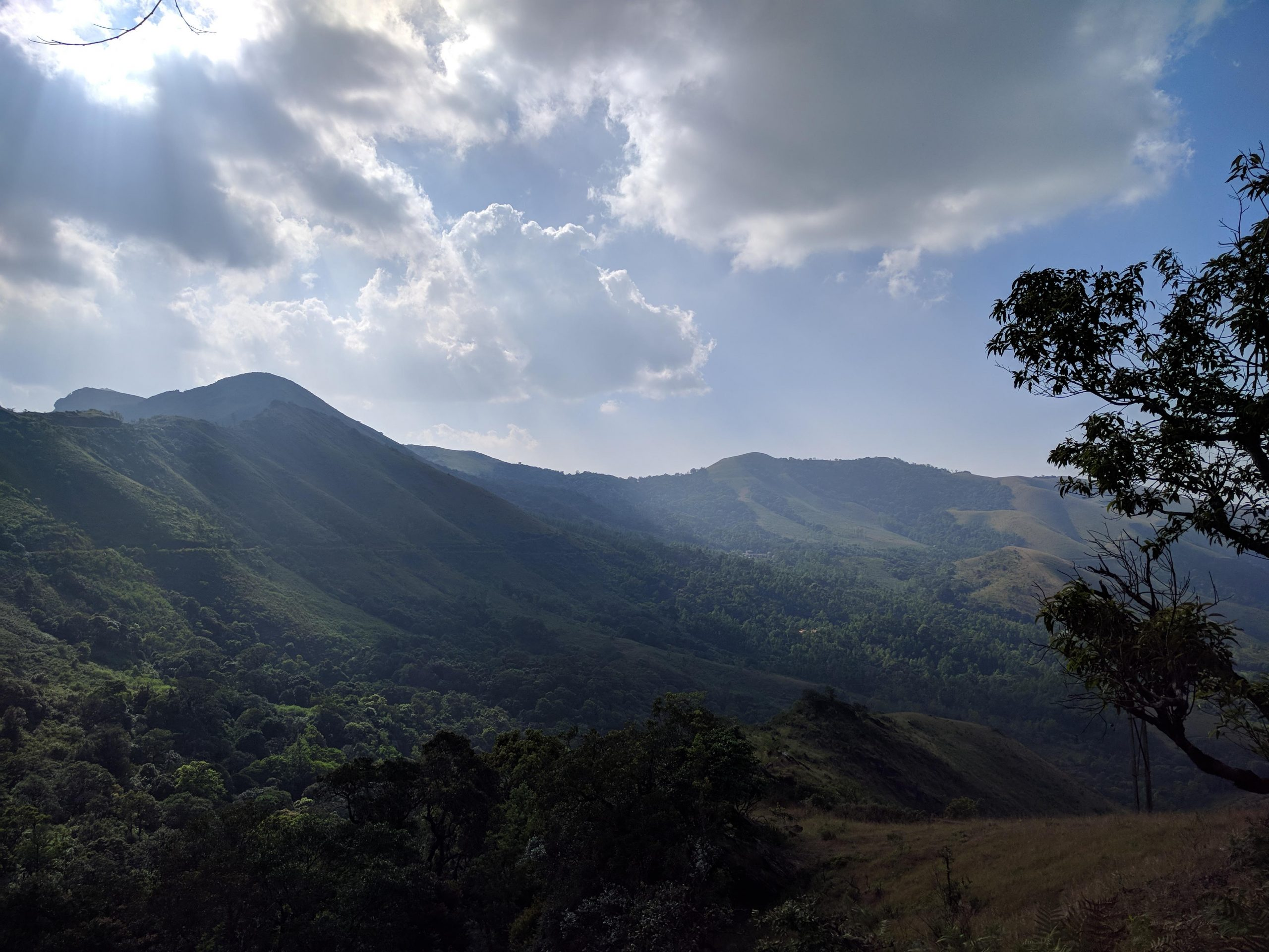 Mountains Scenery in Chikmagalur