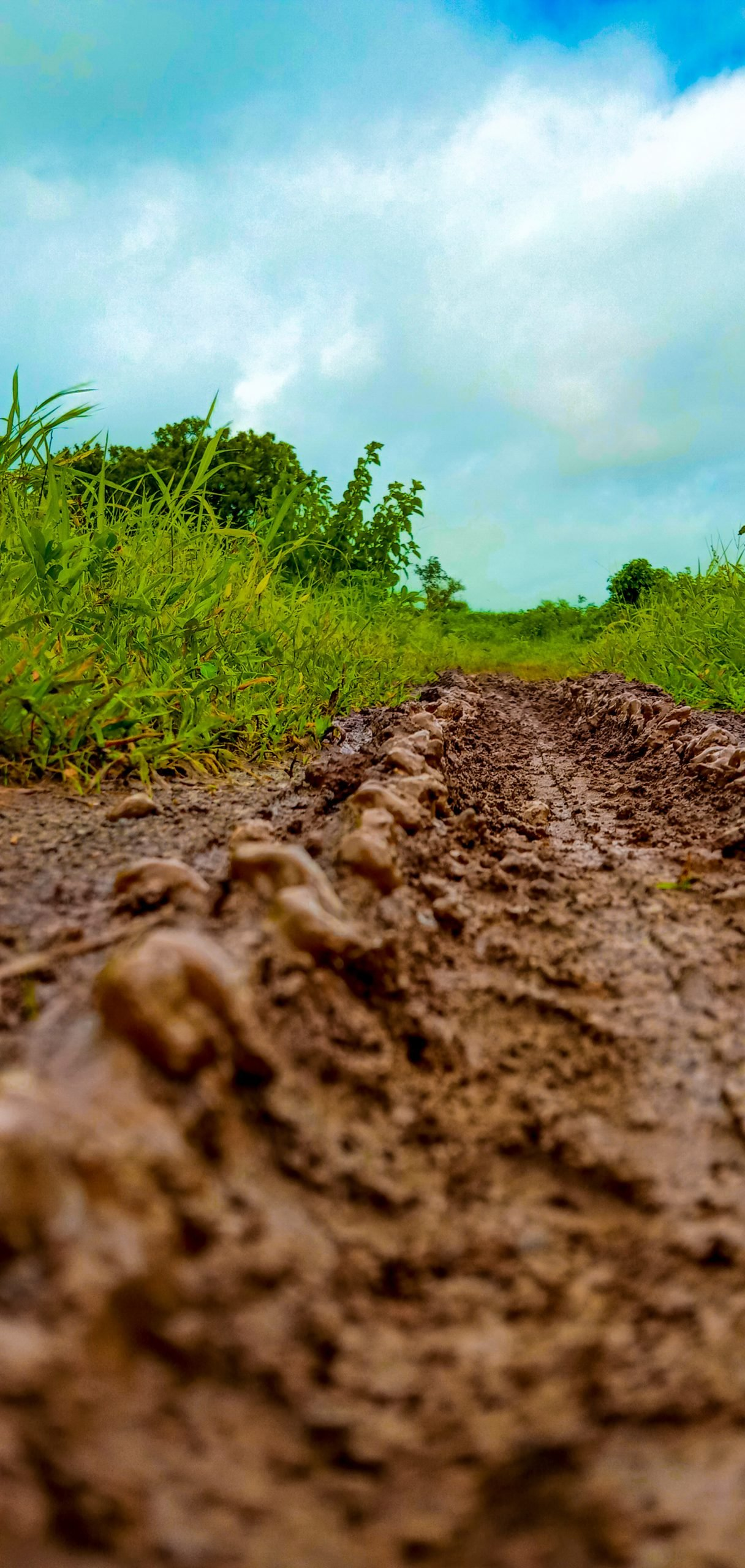 Muddy Motorcycle Trail
