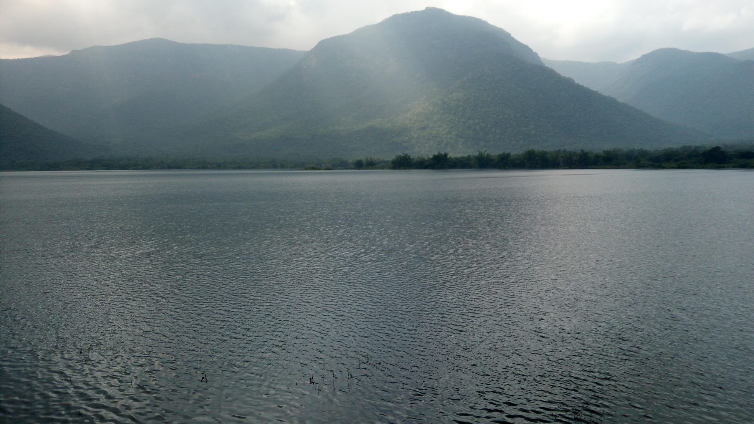 Nature Reservoir