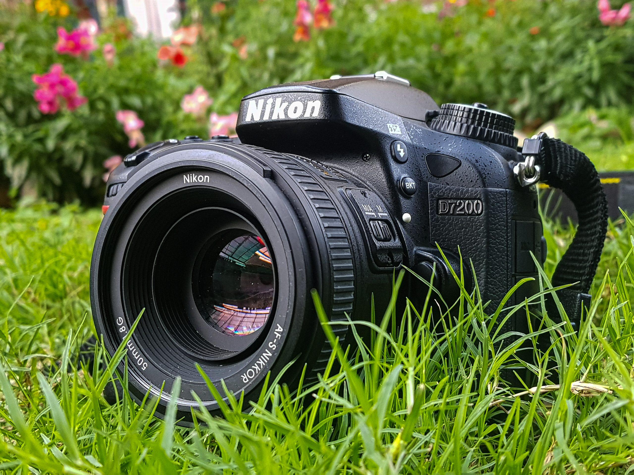 Nikon Camera laid on grass
