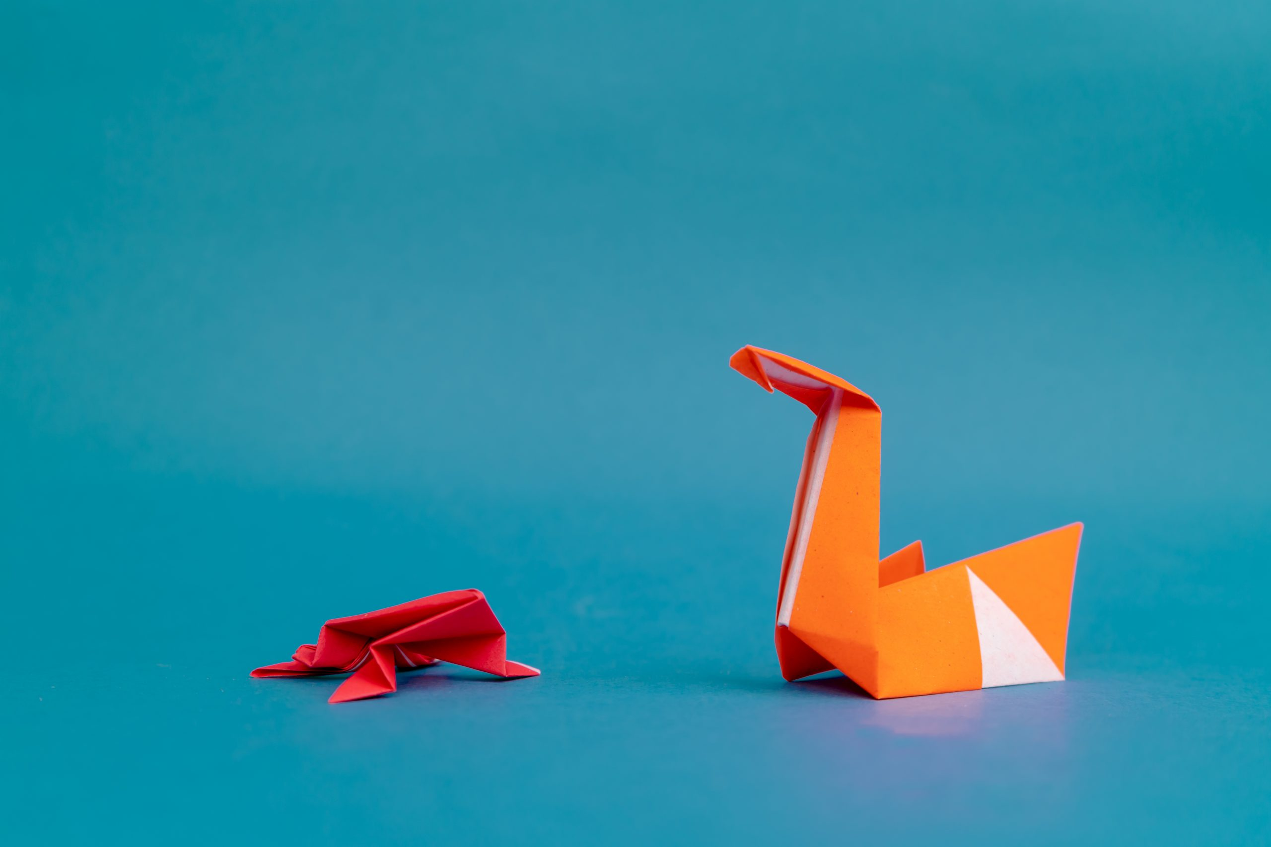 Origami Frog and Swan