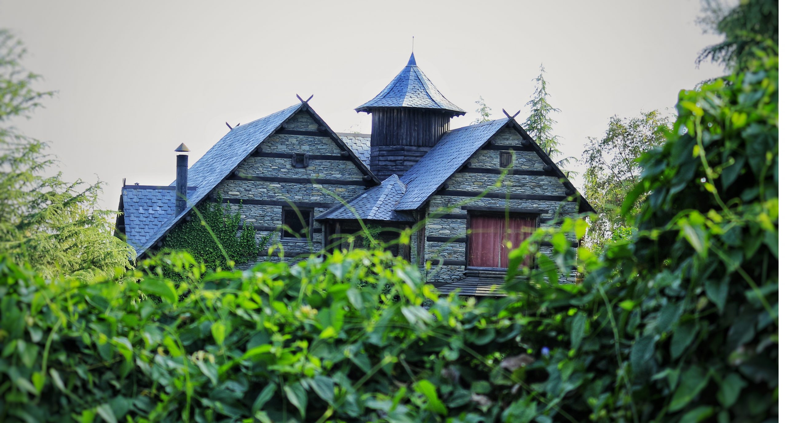 A cottage situated in Palampur.