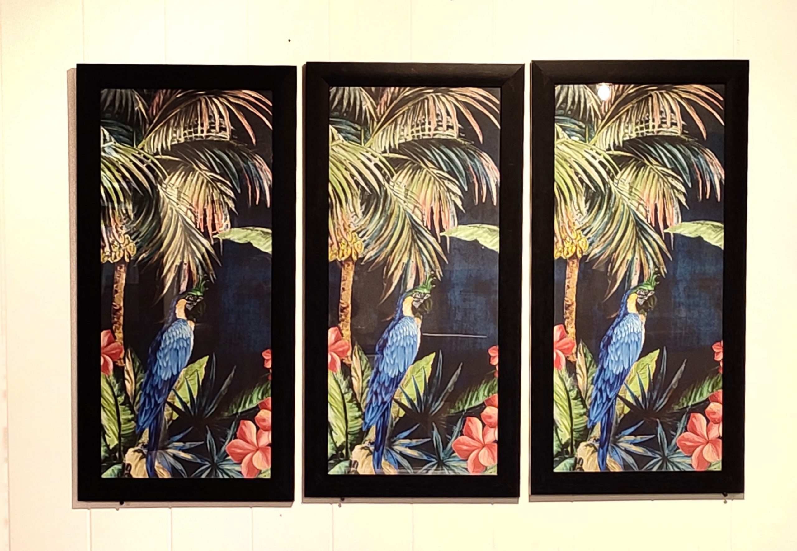 Parrot Painting Frames on the Wall
