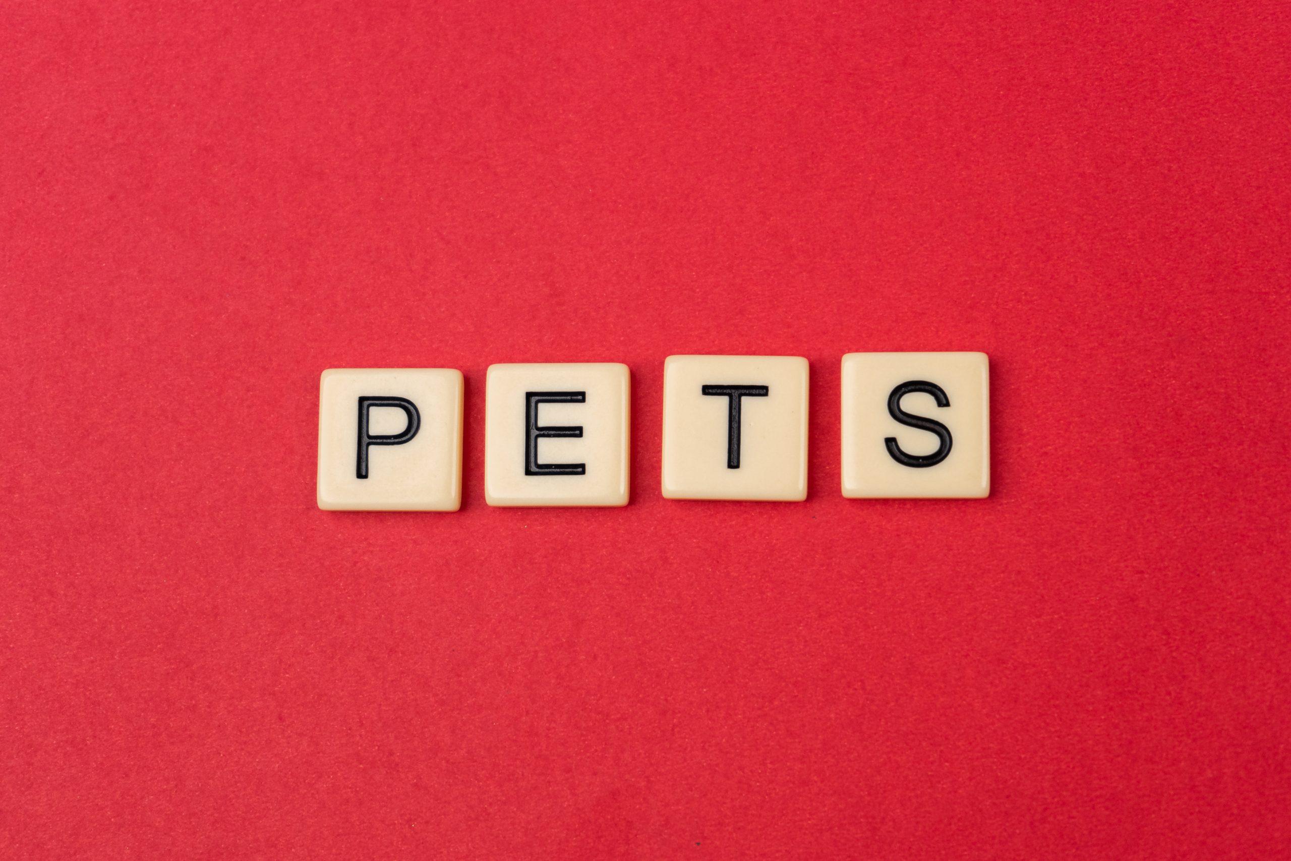 Pets written on scrabble