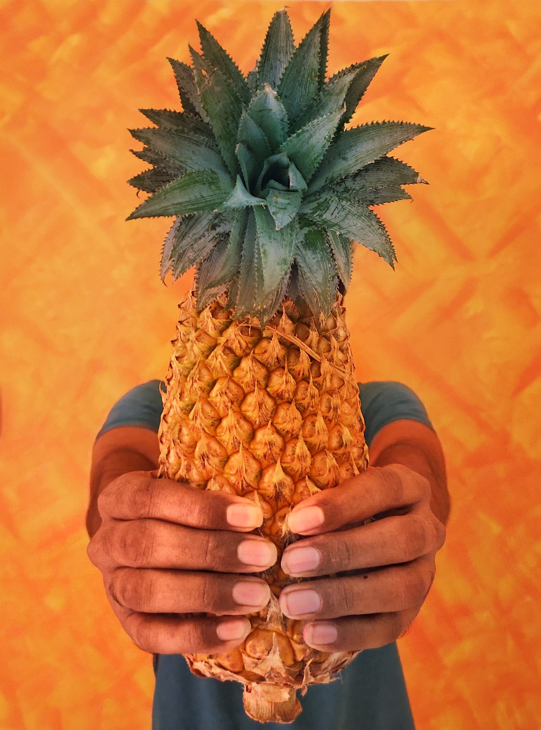A Hand Holding a Pineapple on Focus