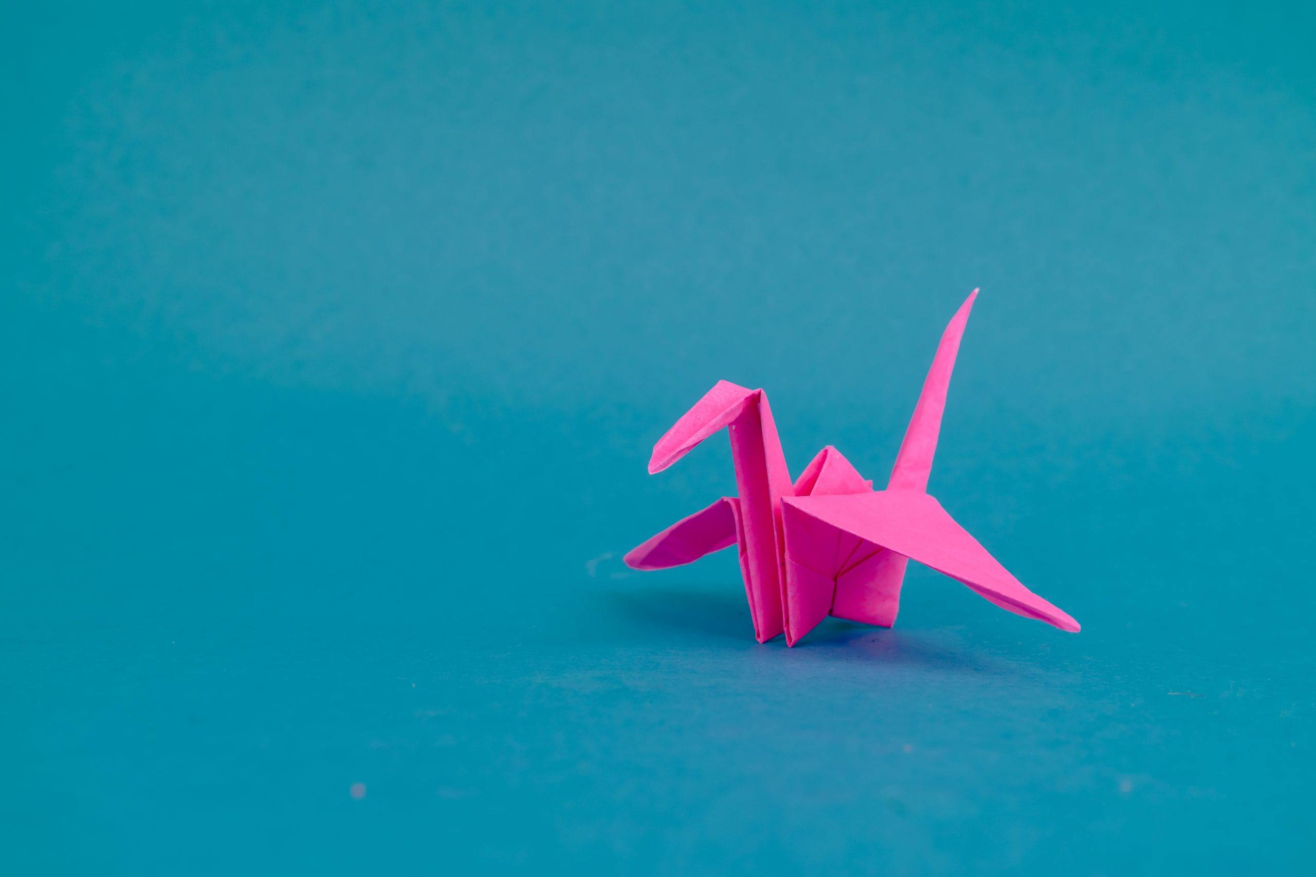 Pink crane origami