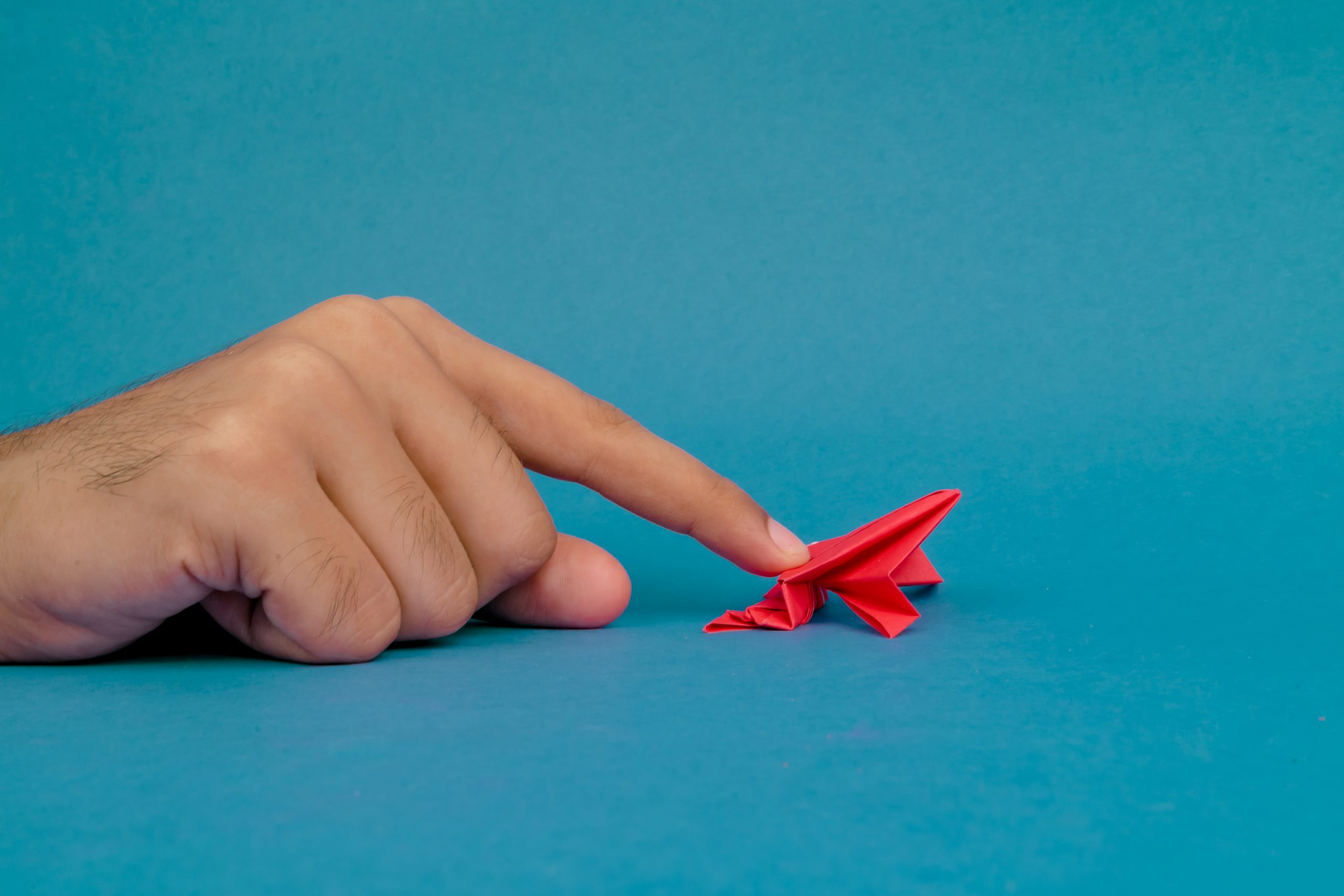 Playing with origami frog