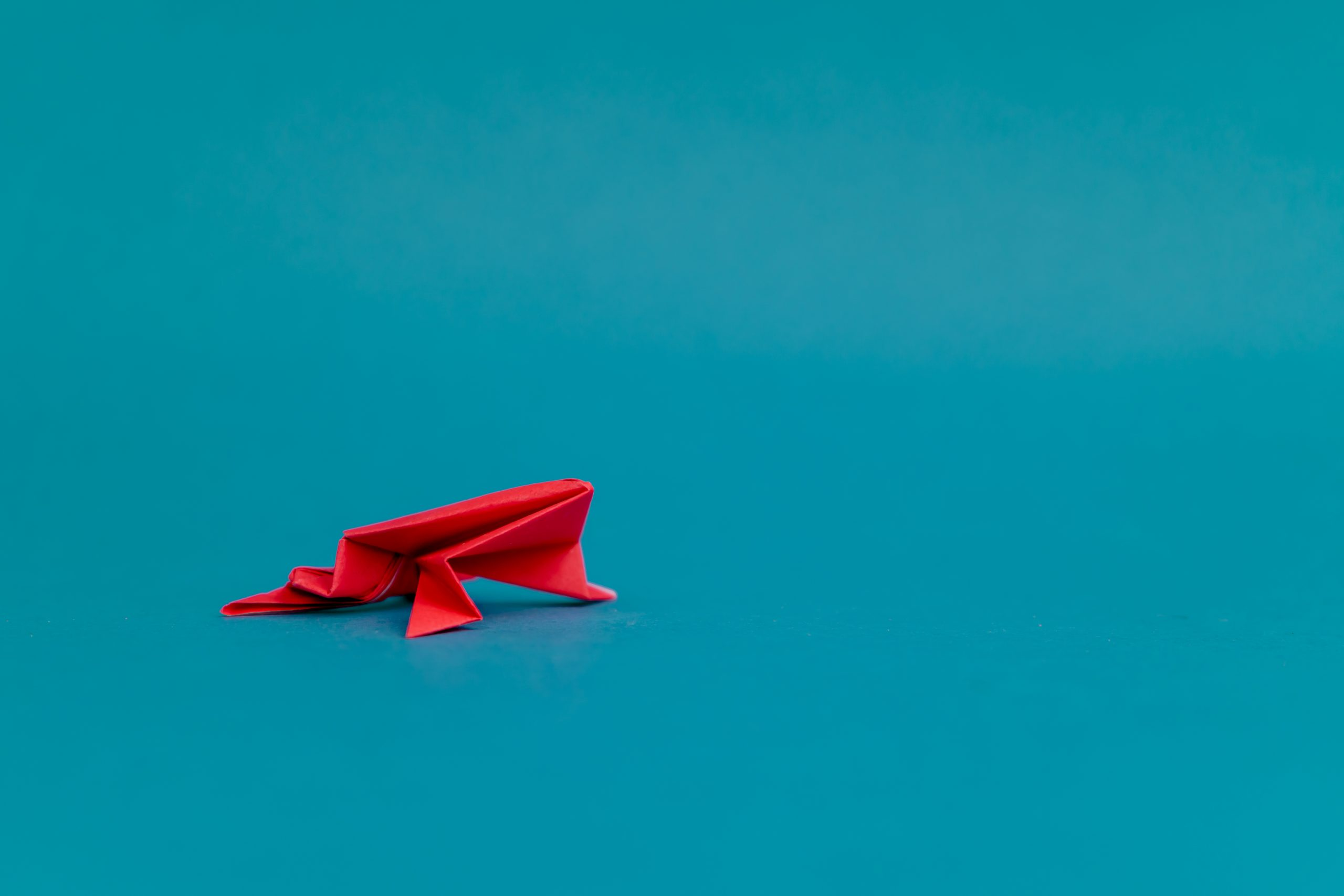 Red frog origami