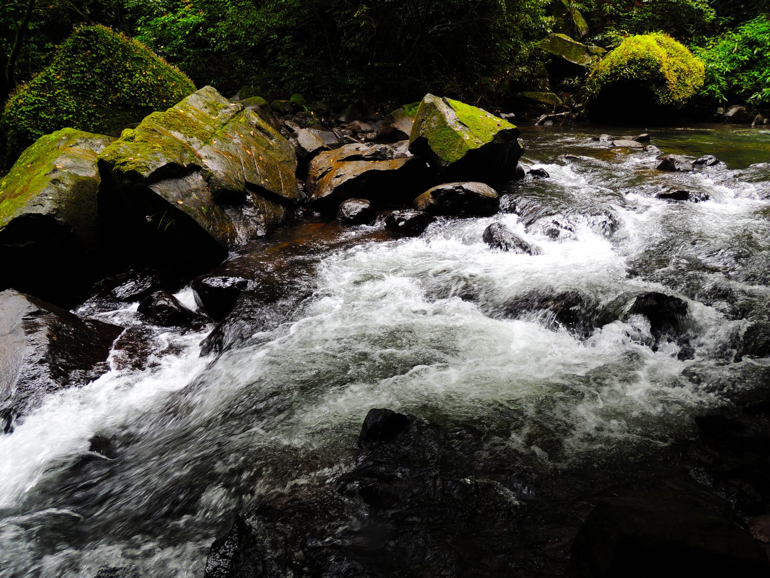 River Flowing Waters