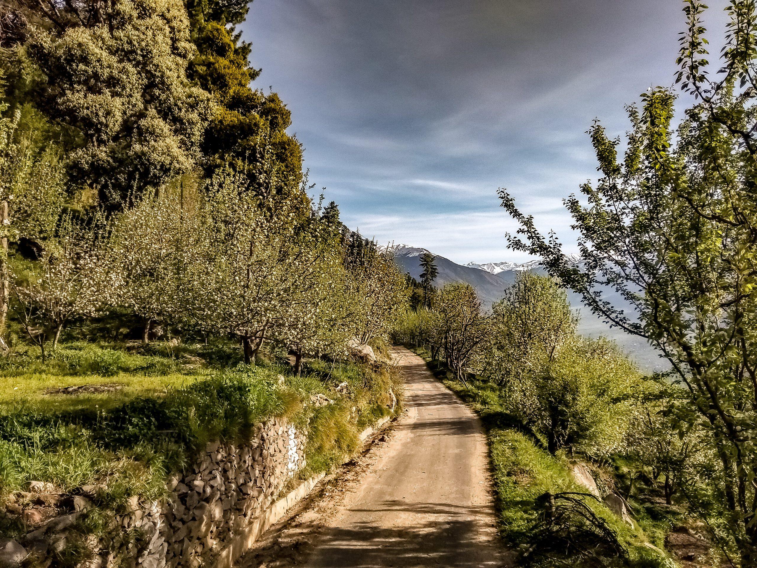 Roads of Manali