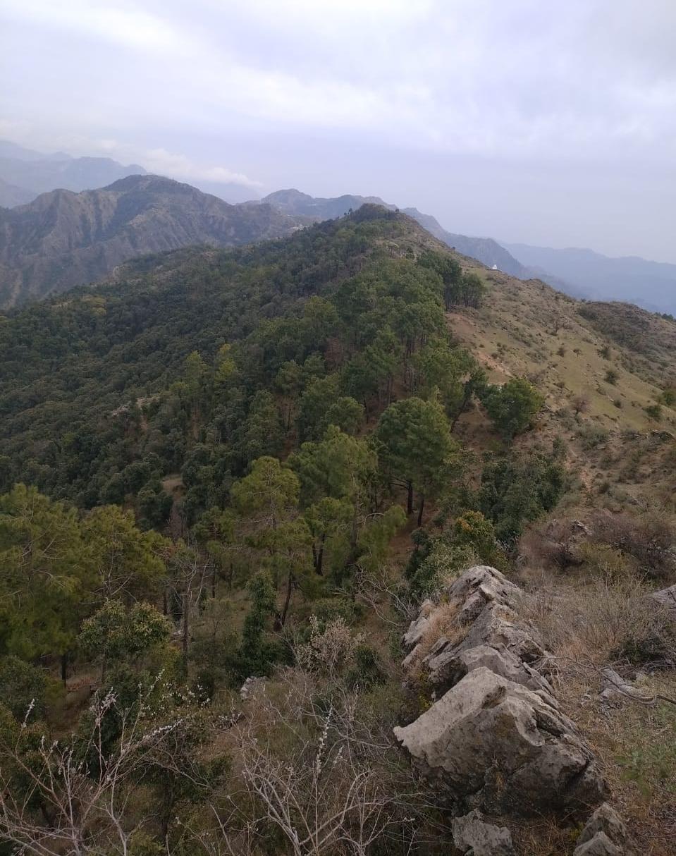 Beautiful mountains of Shimla