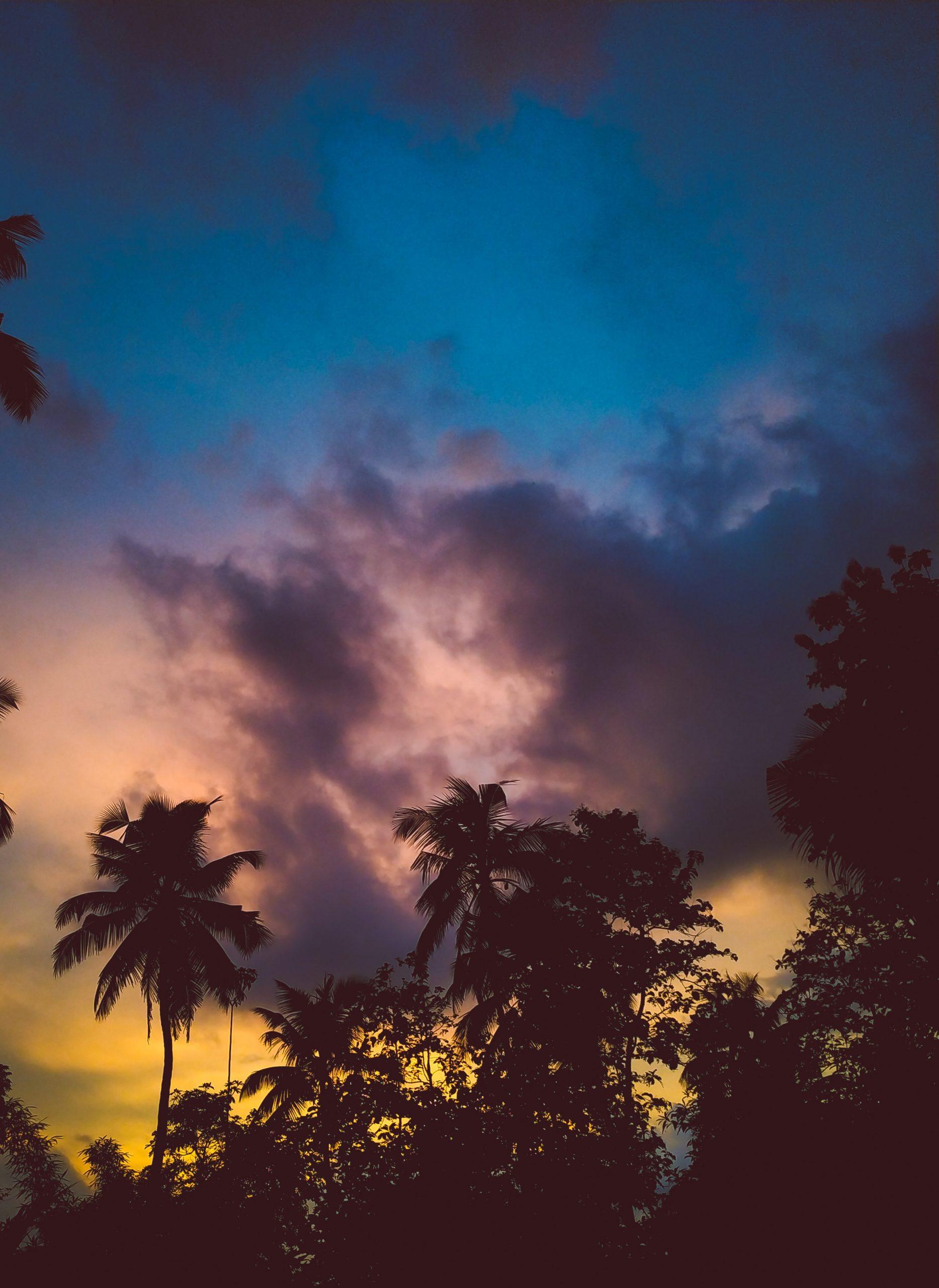 Sky's Bliss