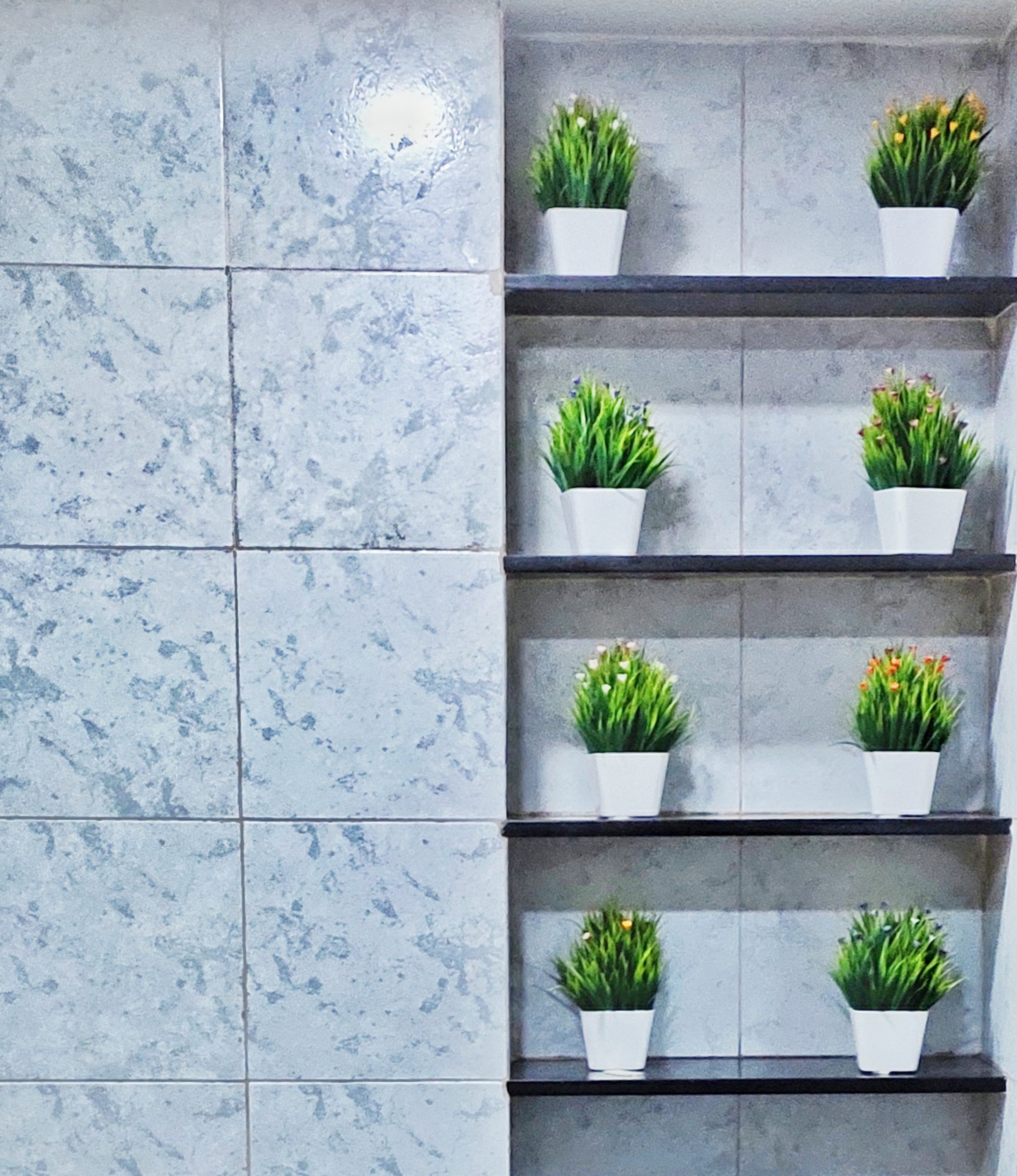 Small plant pots in a bathroom