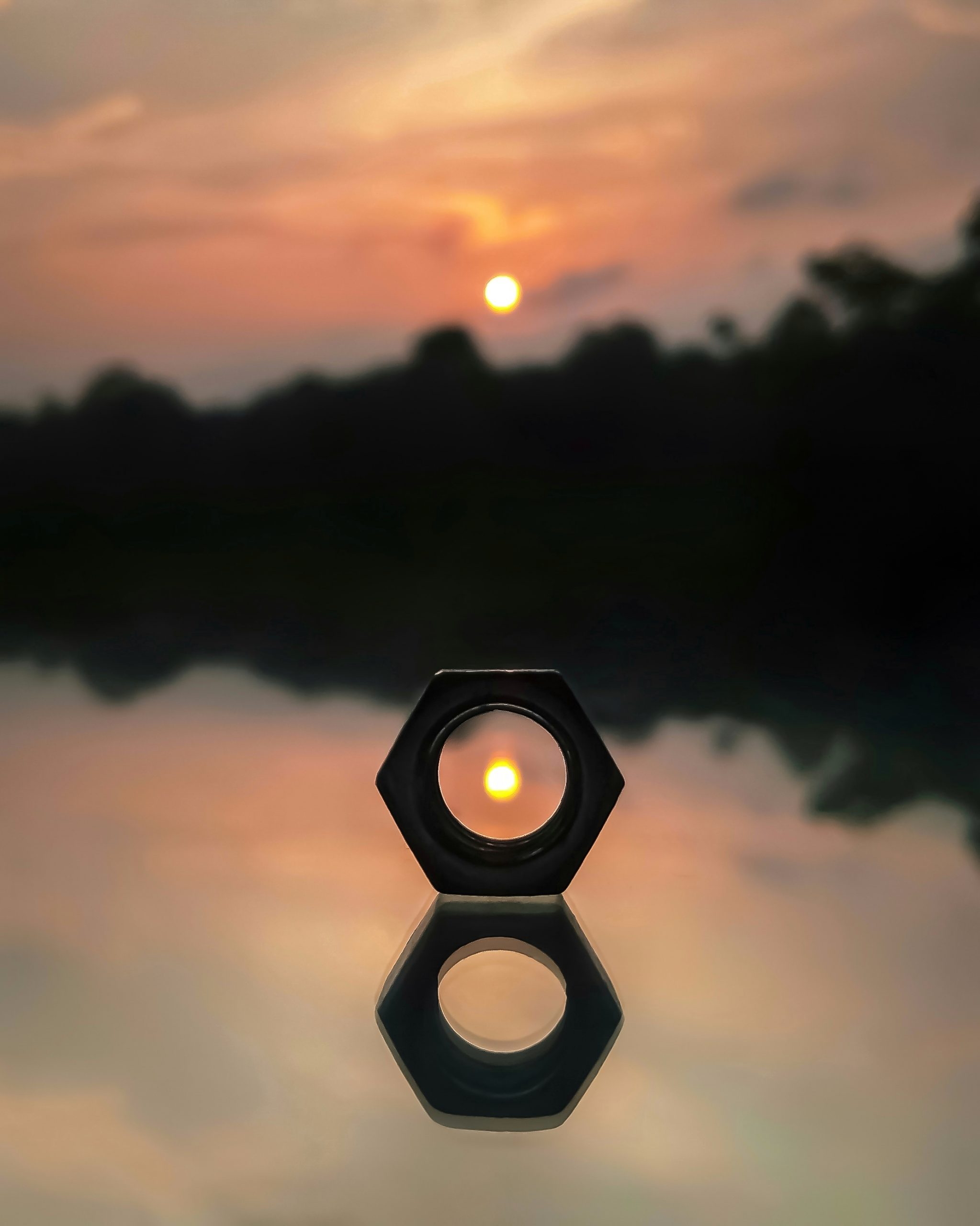 Sun's reflection inside a nut