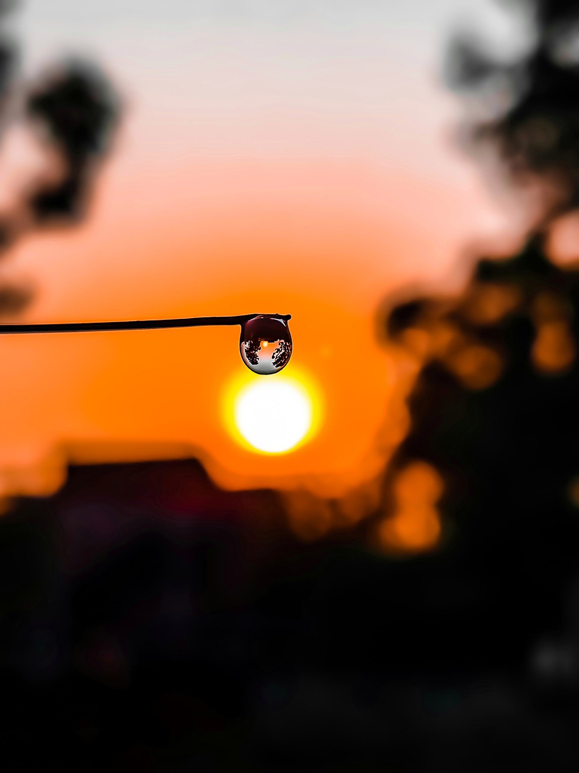 drop of water against setting sun