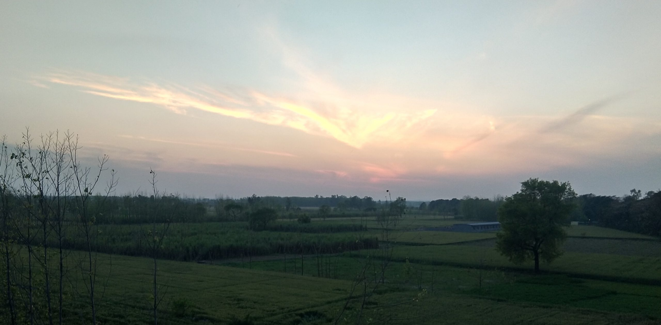 Sunset Scenery in the Farm