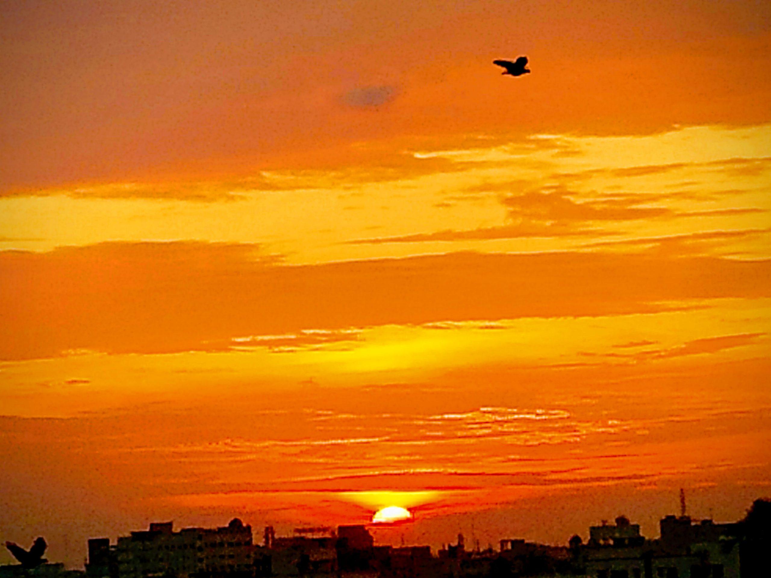 Sunset and the reddish sky