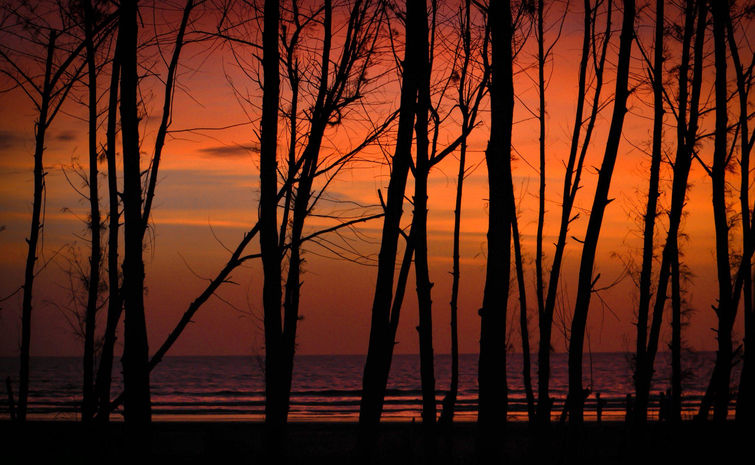 Sunset at Bhuigaon beach in Virar