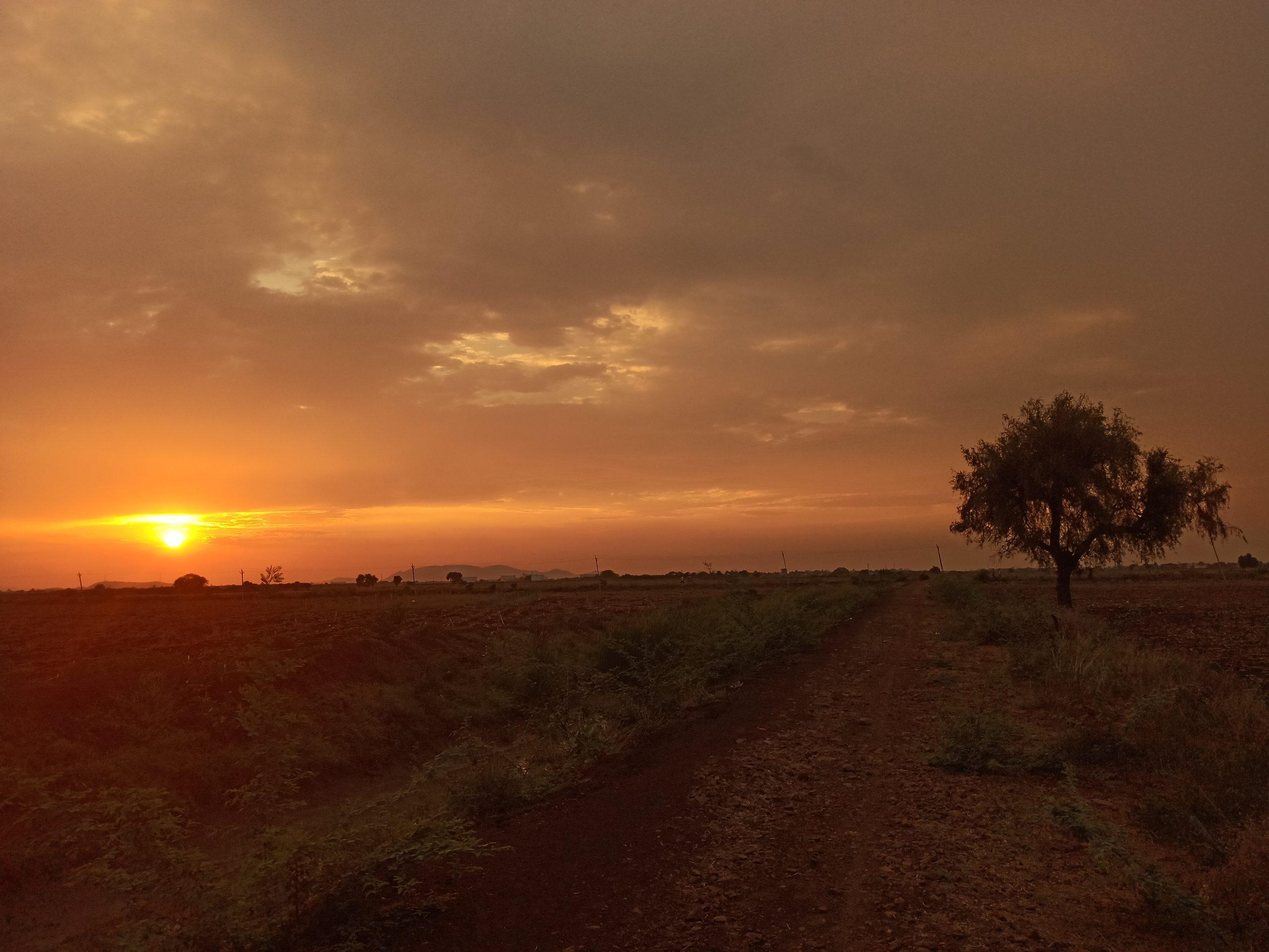Sunset through fields