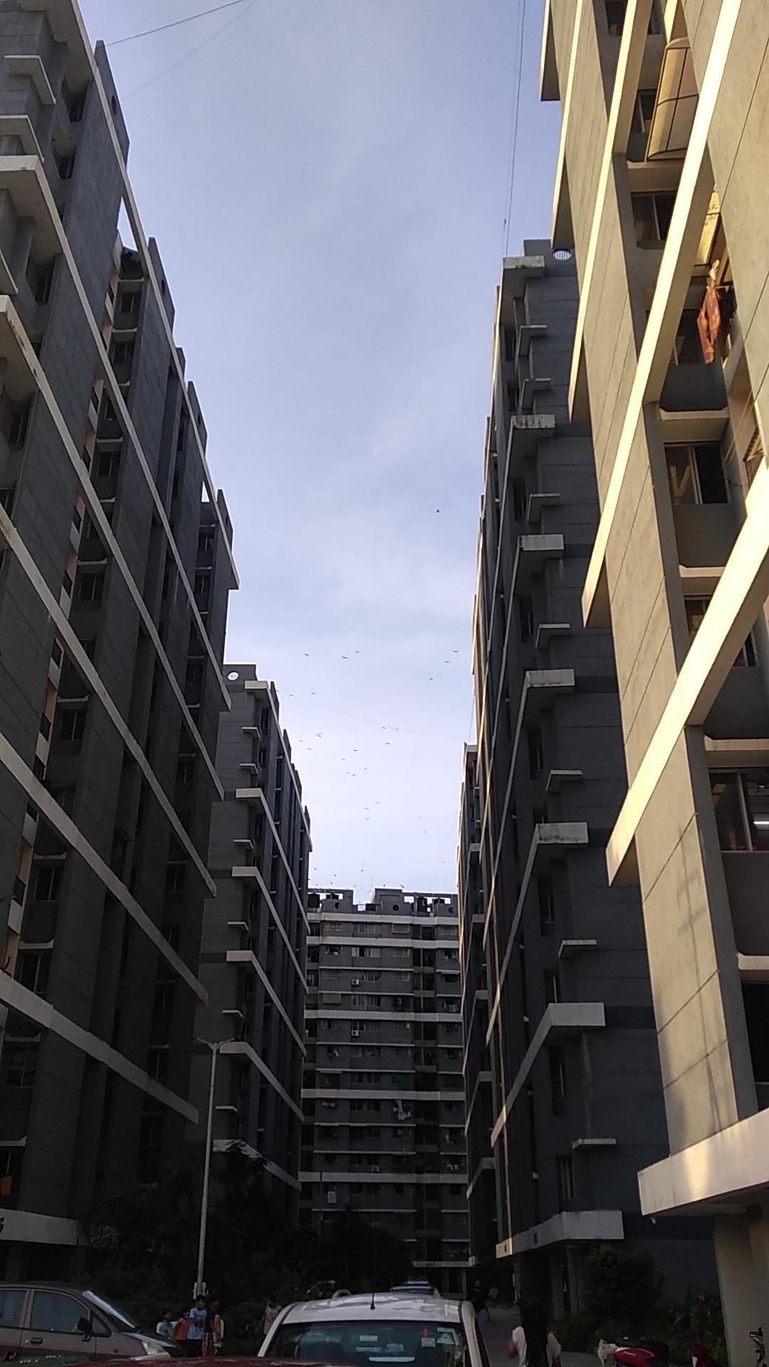 Symmetric Street View