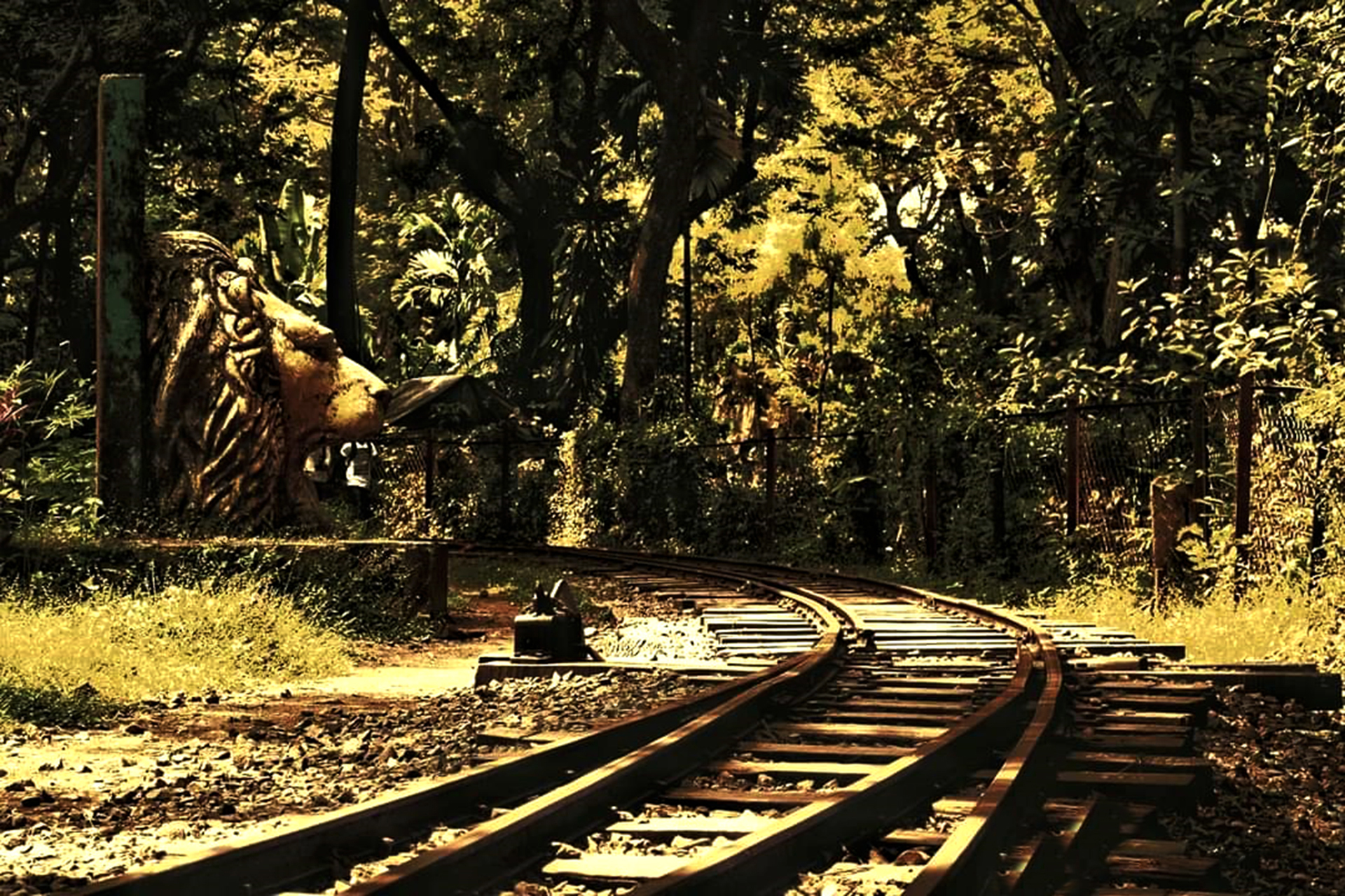TRAIN TRACK AT SANJAY GANDHI NATIONAL PARK MUMBAI INDIA