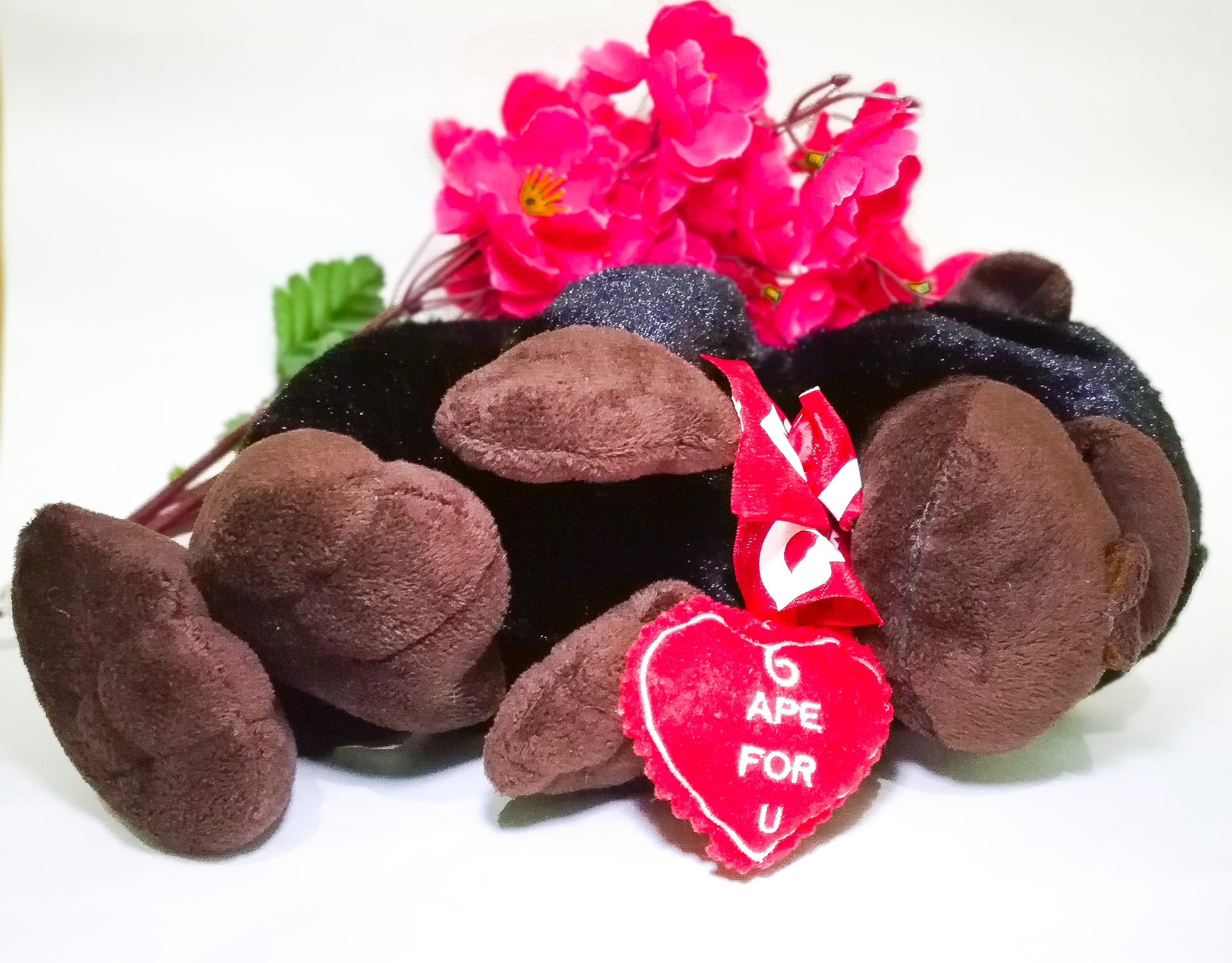 Valentine's Day Gift of Soft Toy