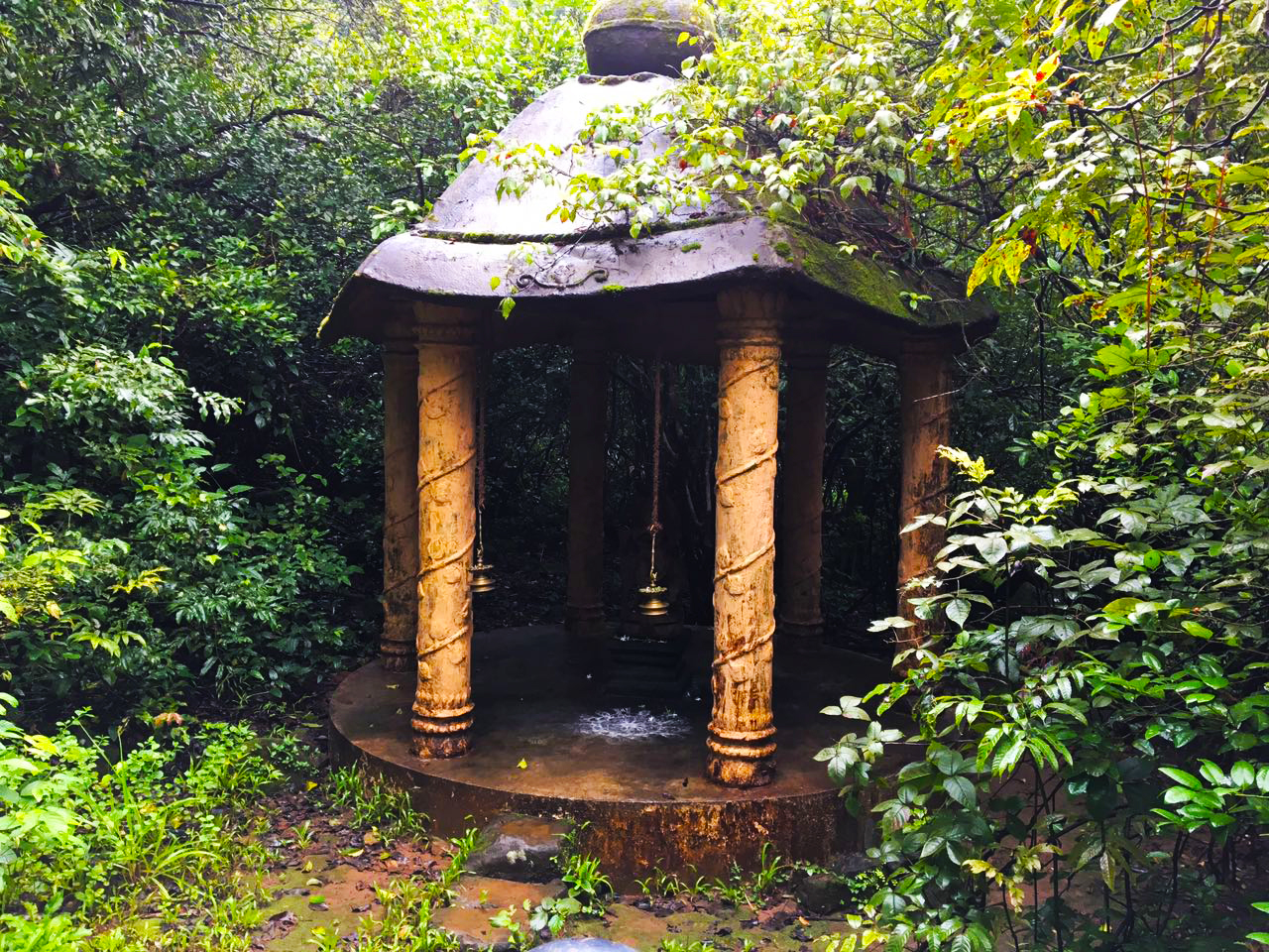 Temple Within The Woods