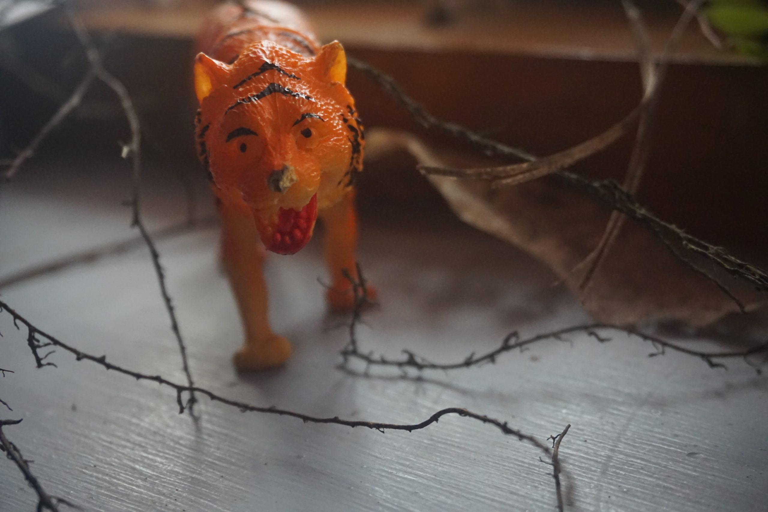 Tiger Toy Display