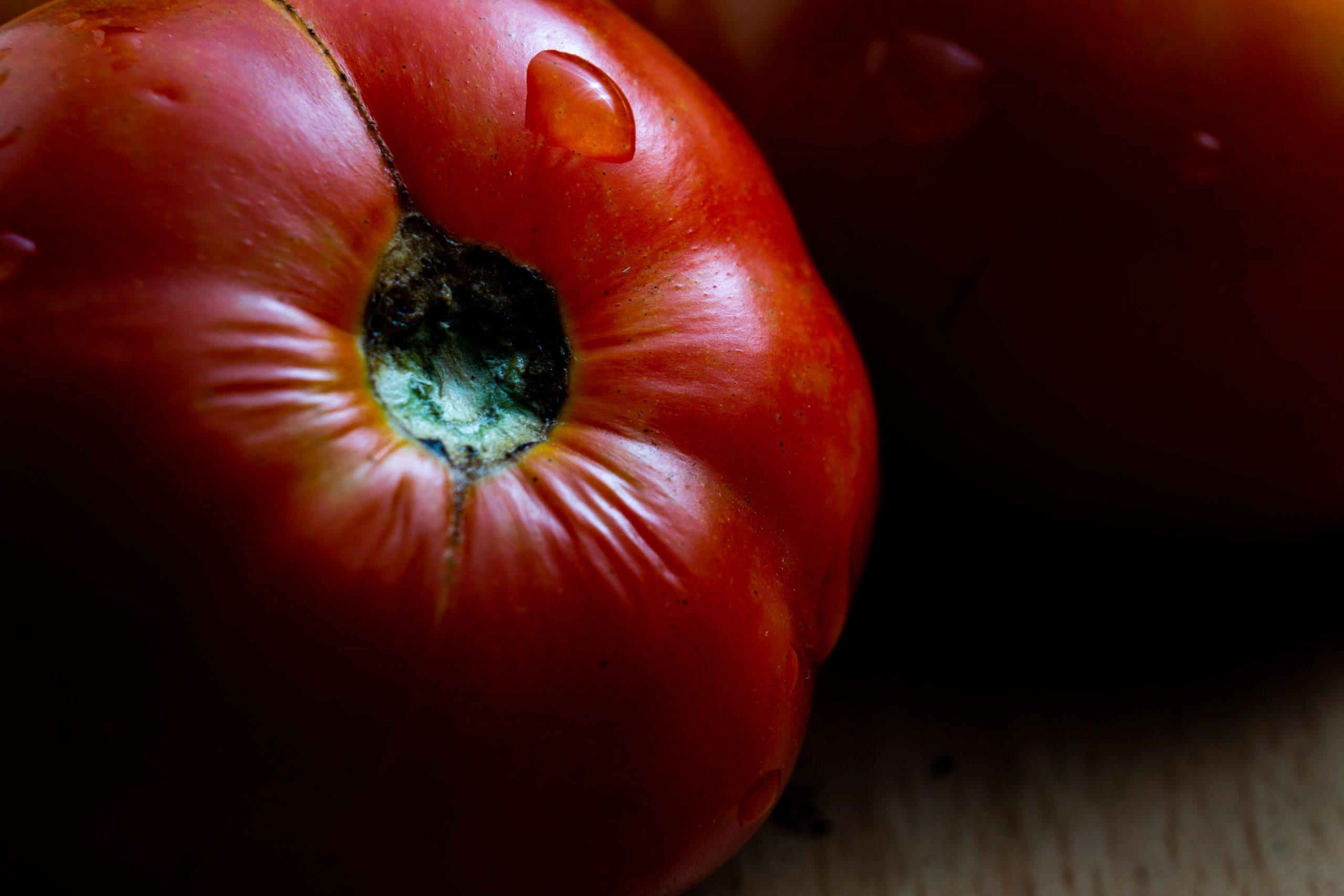 Tomato in the Table on Focus