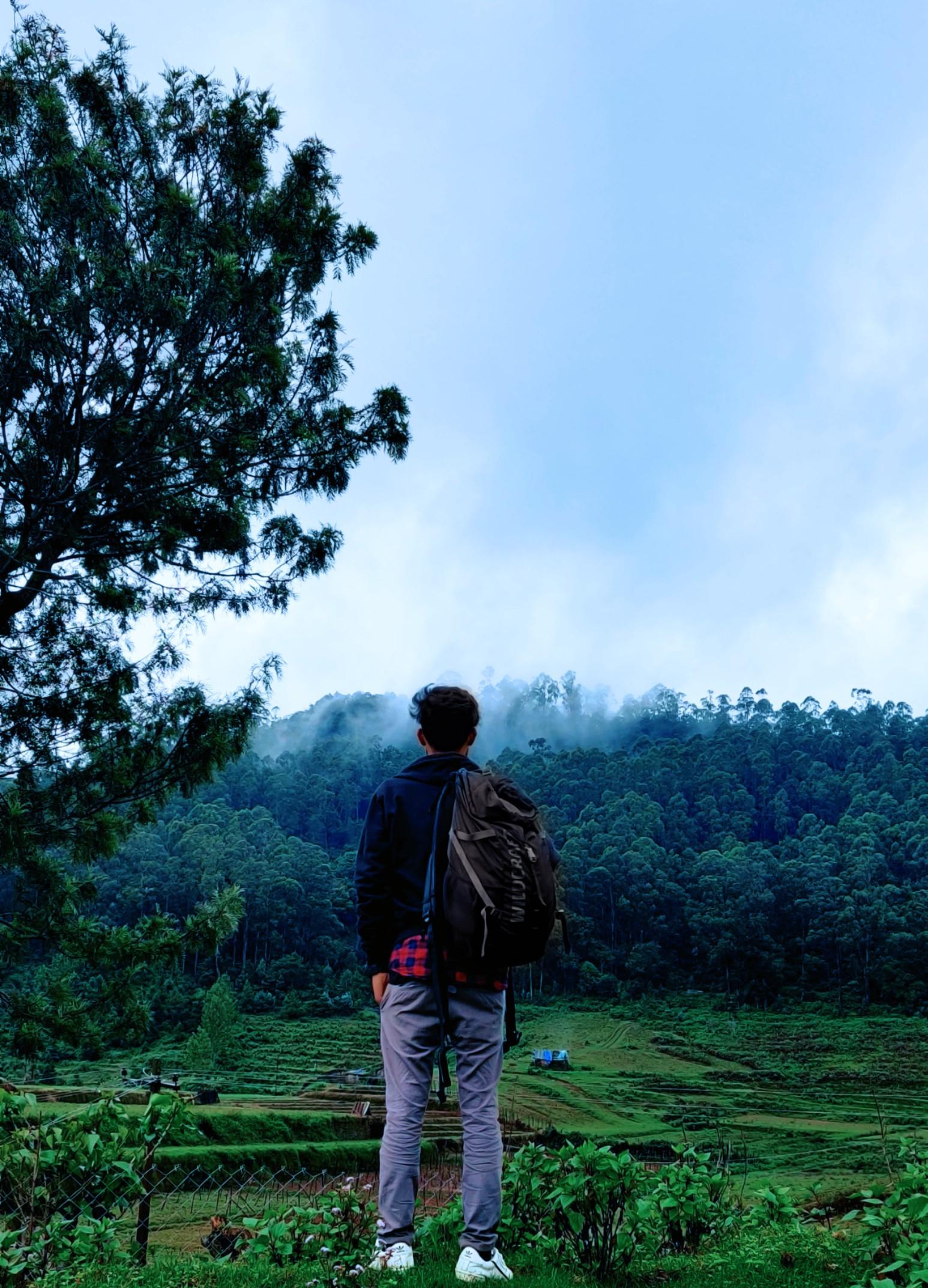 traveler admiring nature