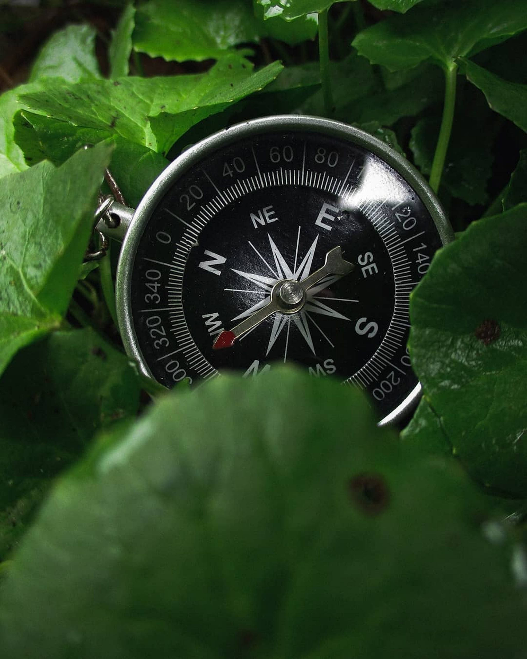 Travelling Compass