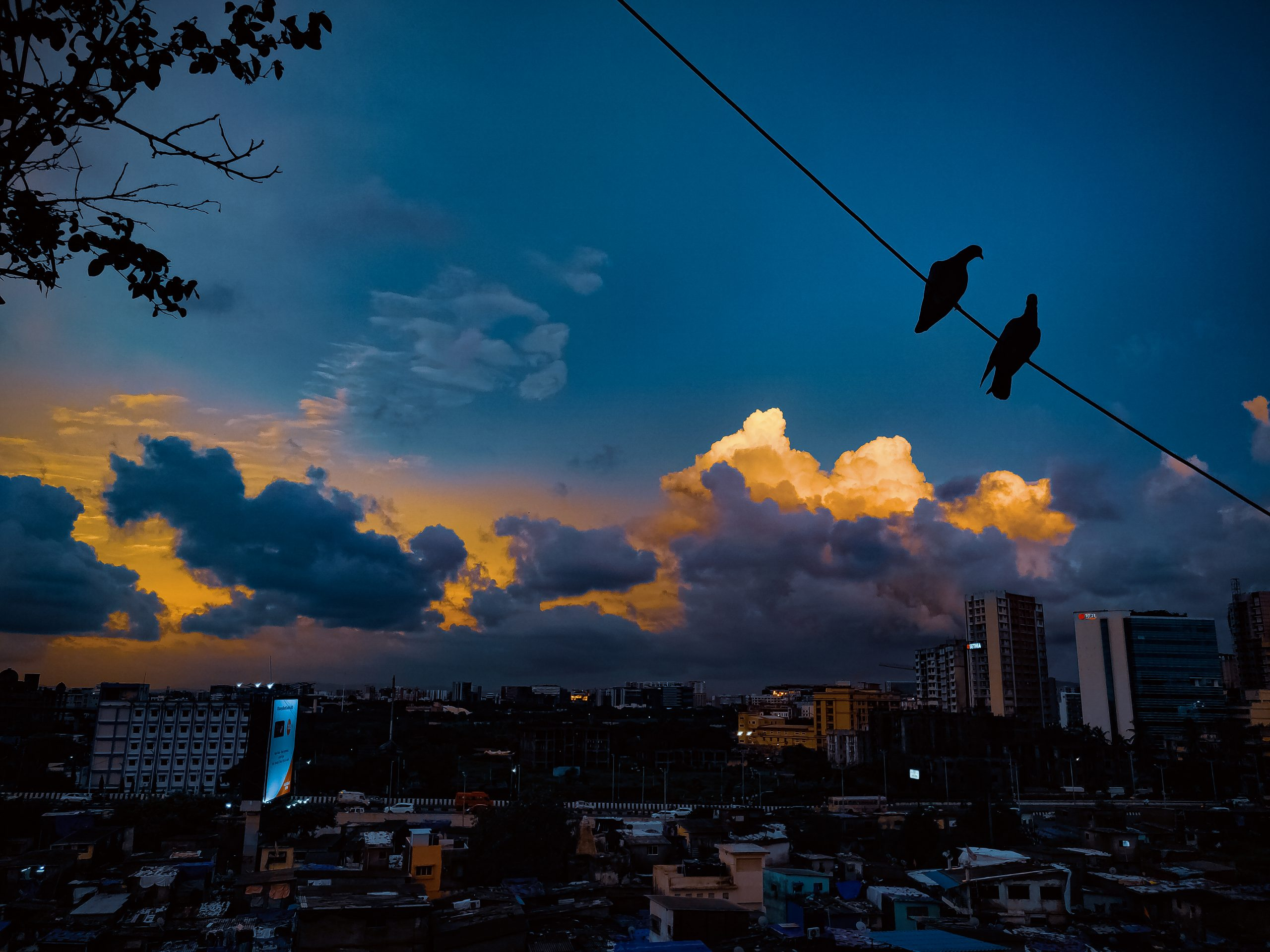 Two Birds Hanging on a Wire at Dusk Scenery