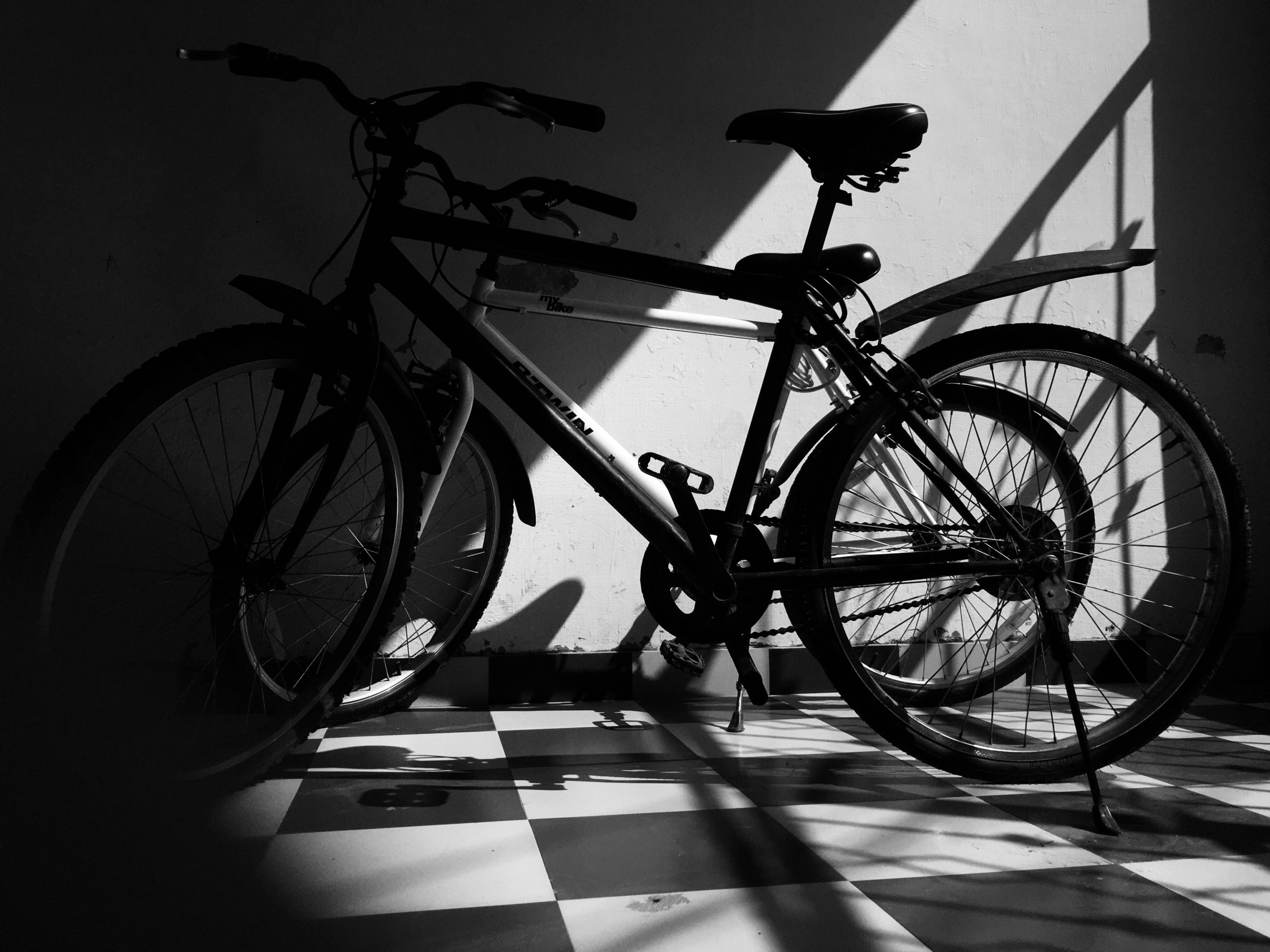 Two bicycles in shadow