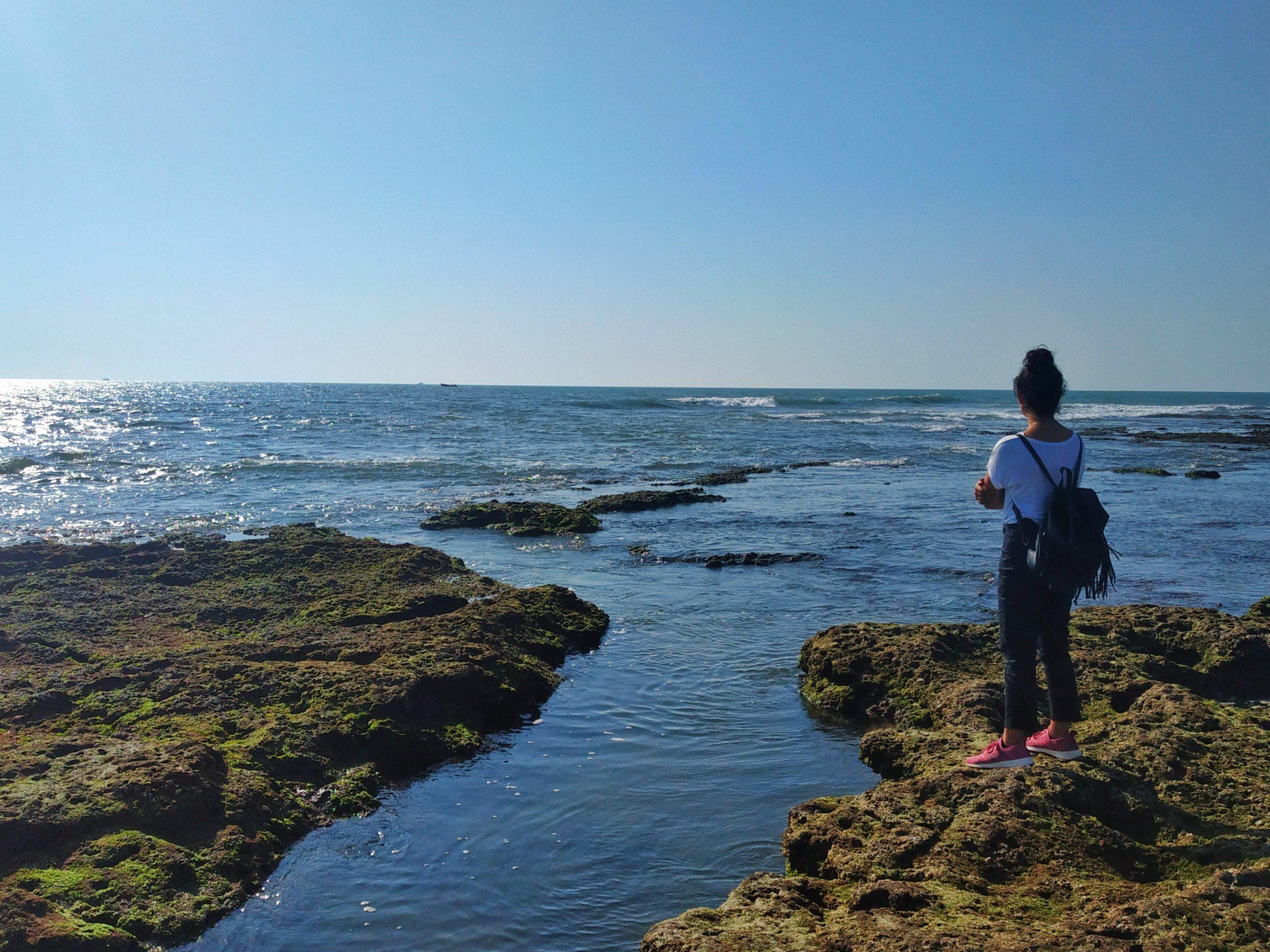 Viewing Sea Scenery