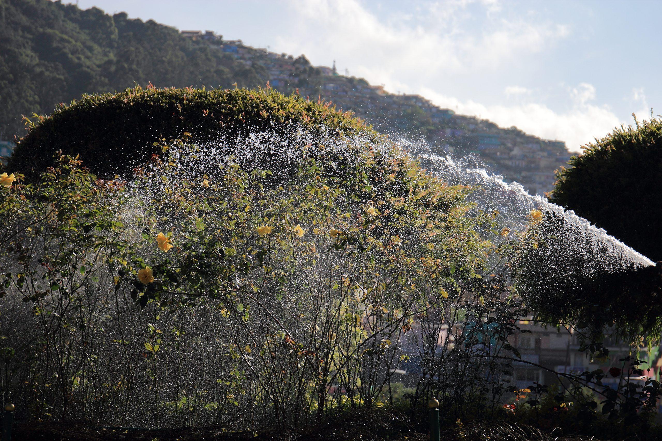 Garden Watering Splash