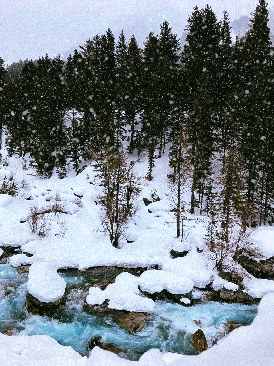 Winter in Sonamarg