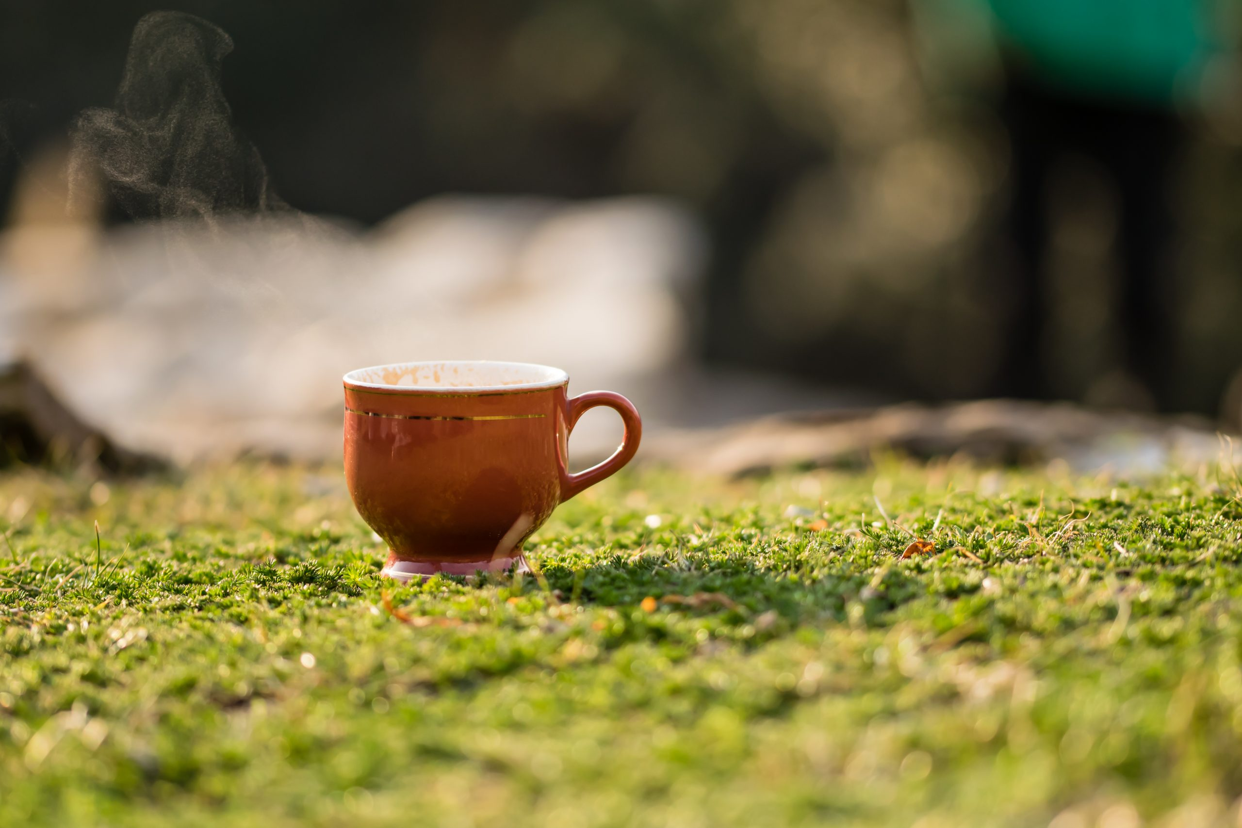 tea cup on the grass