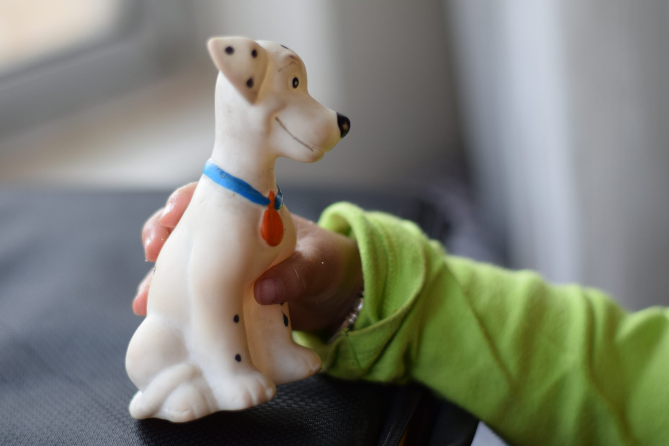 Child Hand Holding a Dog Toy