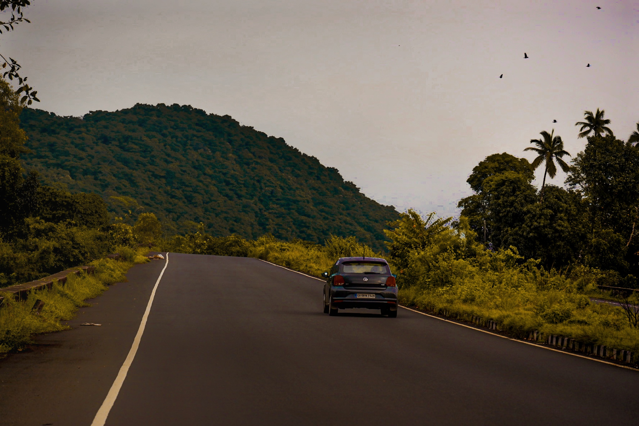 car on a hilly road