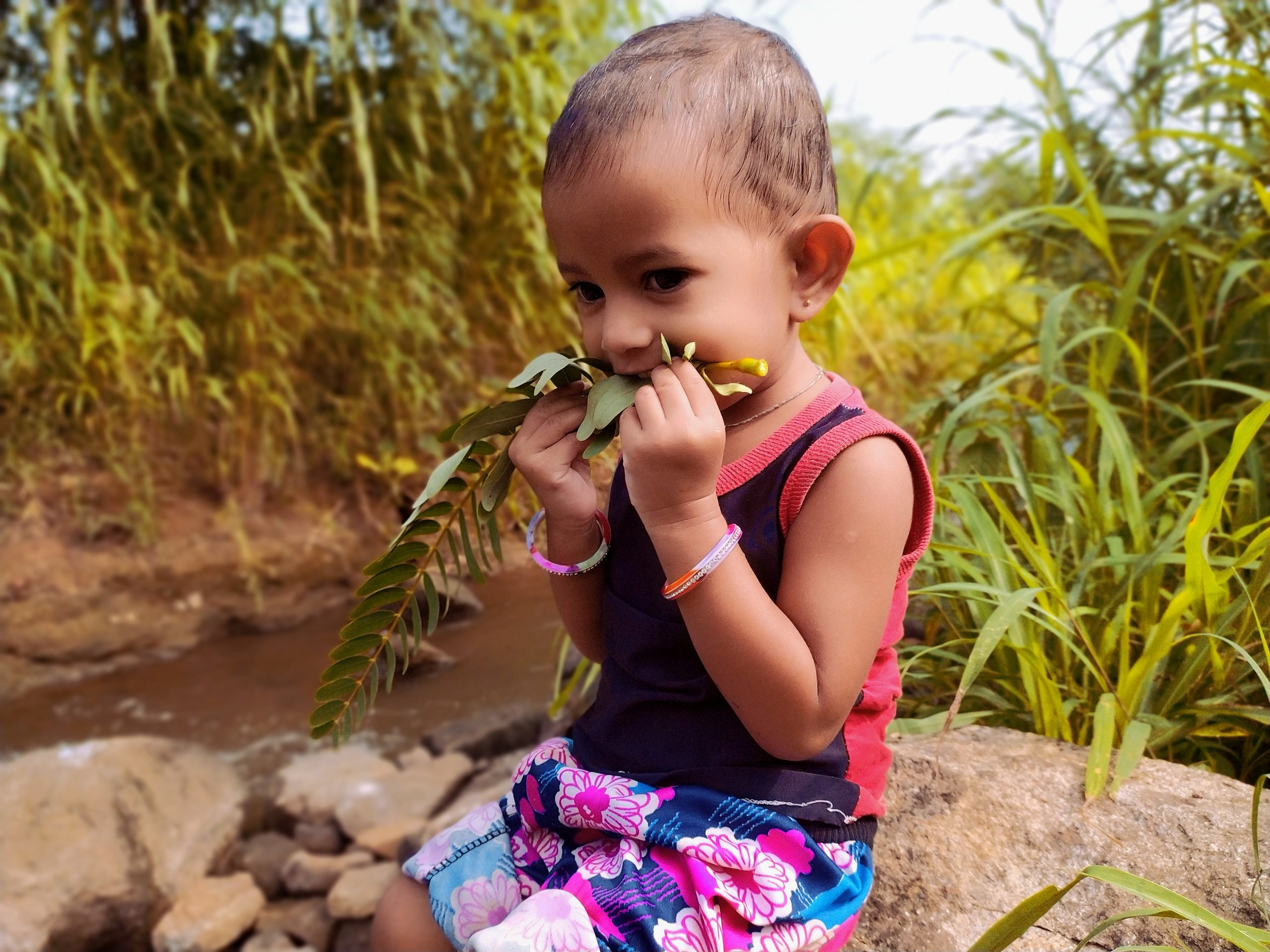 A baby eating soft leaves